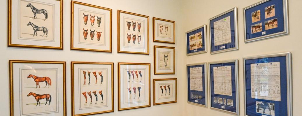 Jockey Club Gallery (Bob Mayberger)