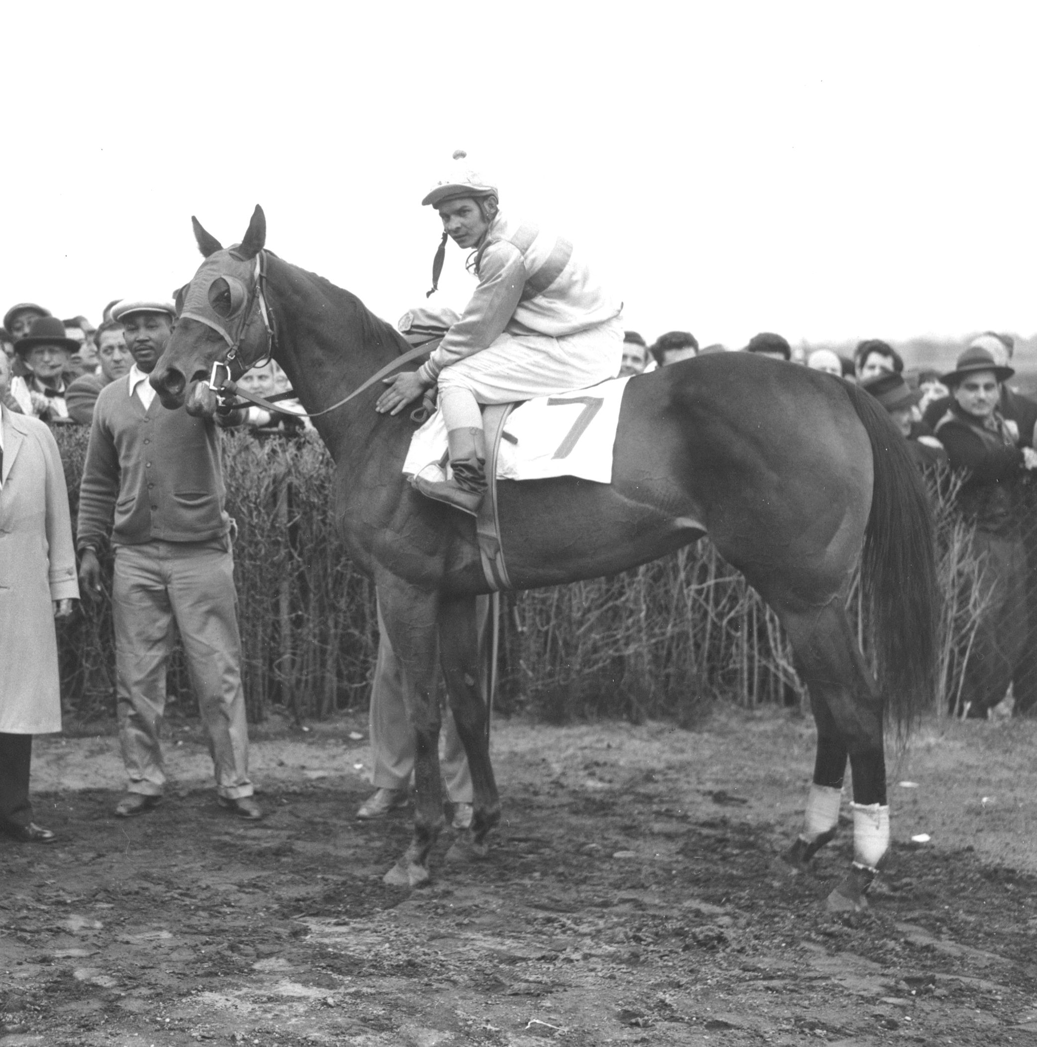 Searching in the winner's circle with Ismael Valenzuela up (Bert Morgan/Museum Collection)