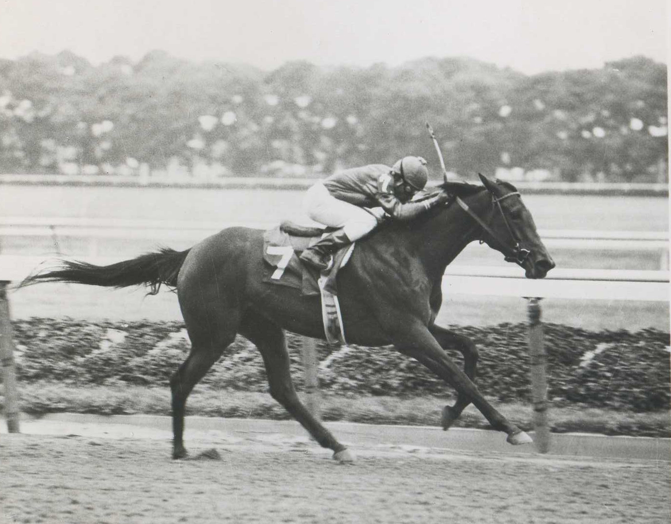 Davona Dale with Jorge Velasquez up in 1979 (NYRA/Photo Communcations /Museum Collection)
