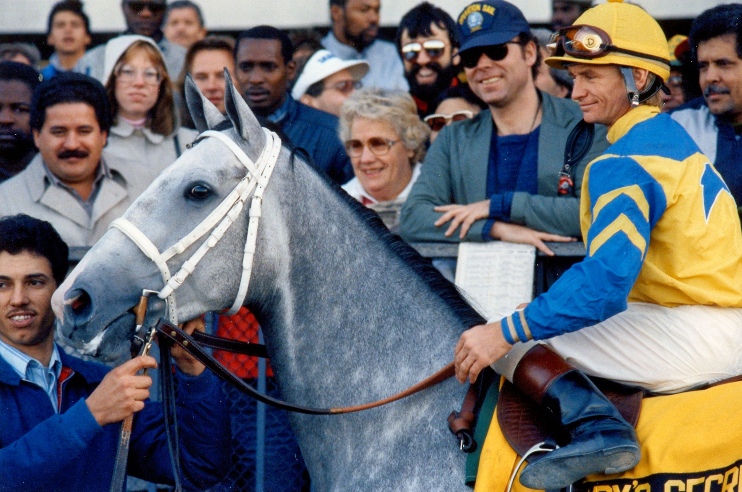 Lady's Secret (Pat Day up) in the winner's circle at Belmont Park in 1986 for Lady's Secret Day (Barbara D. Livingston/Museum Collection)