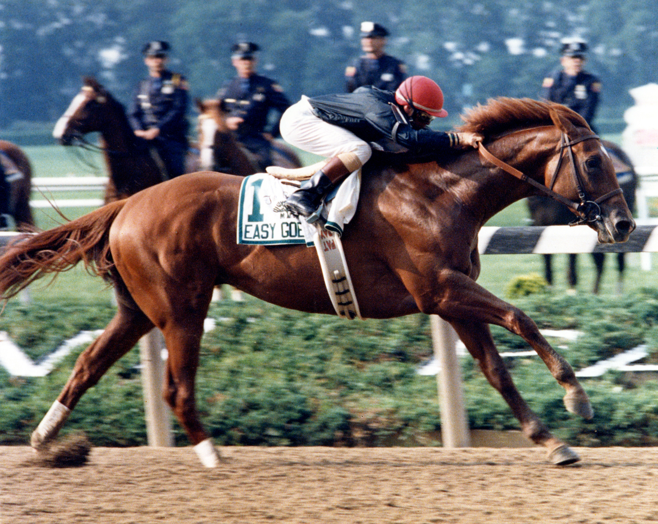 Easy Goer (Pat Day up) winning the 1989 Belmont Stakes (NYRA/Bob Coglianese /Museum Collection)
