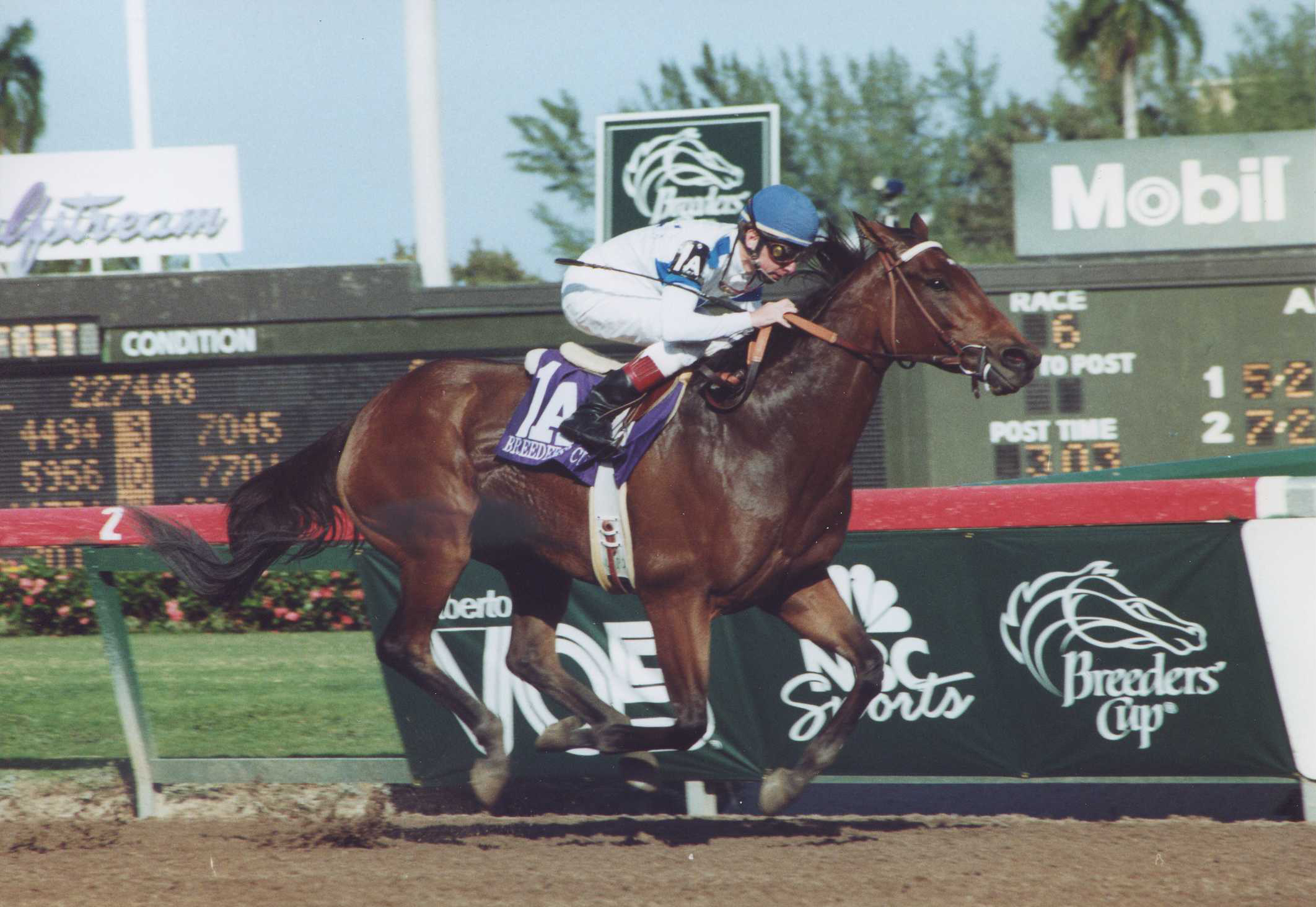 Paseana (Chris McCarron up) winning the 1992 Breeders' Cup Distaff at Gulfstream Park (Barbara D. Livingston/Museum Collection)