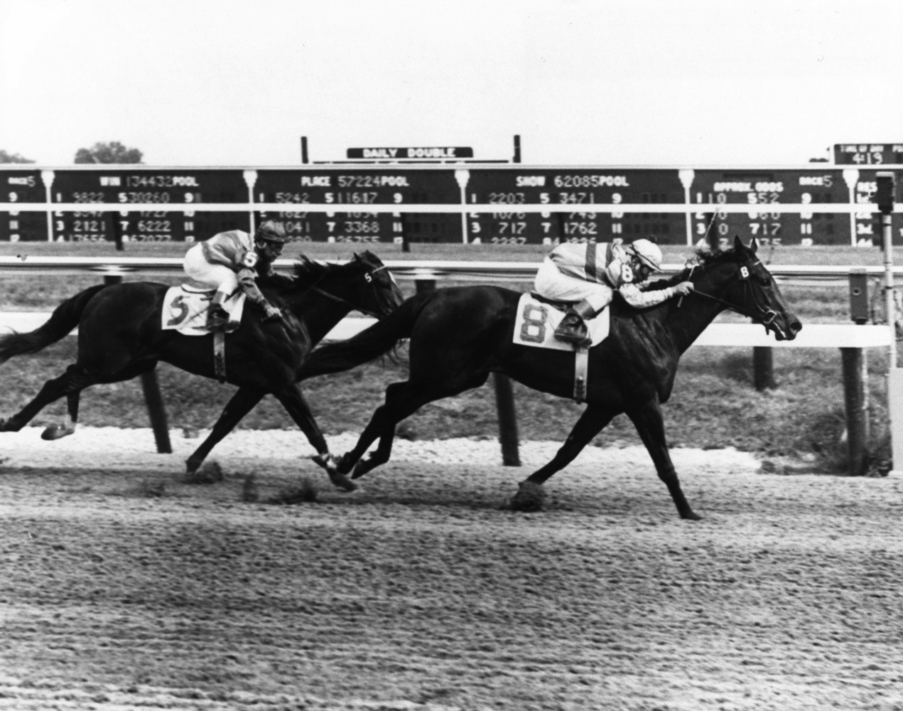 Affectionately (Ismael Valenzuela up) winning the 1962 Polly Drummond Stakes at Delaware Park (The BloodHorse/Museum Collection)