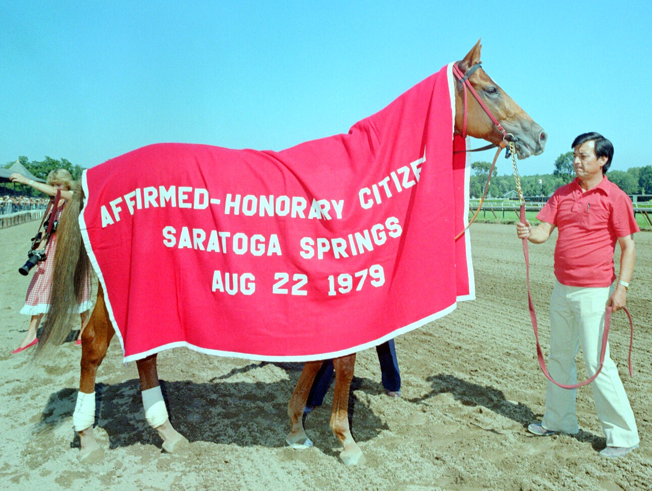 Affirmed at Saratoga Race Course (NYRA/Museum Collection)