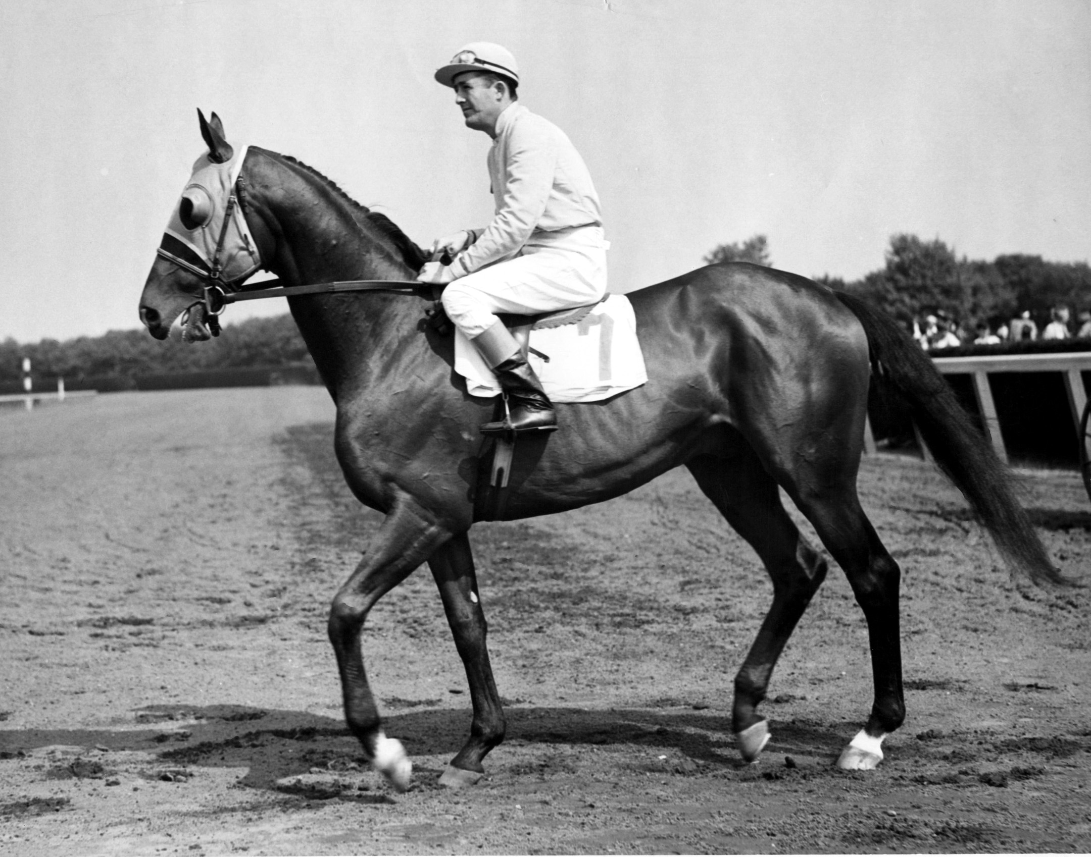 Alsab's final career race at Belmont Park, May 1944 (Museum Collection)