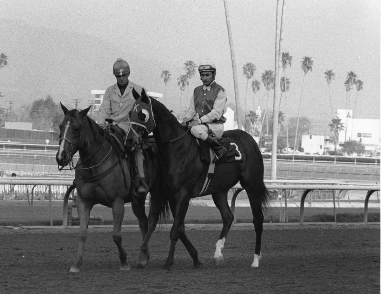 Ancient Title (Fernando Toro up) at the 1974 Malibu Stakes at Santa Anita (Bill Mochon/Museum Collection)