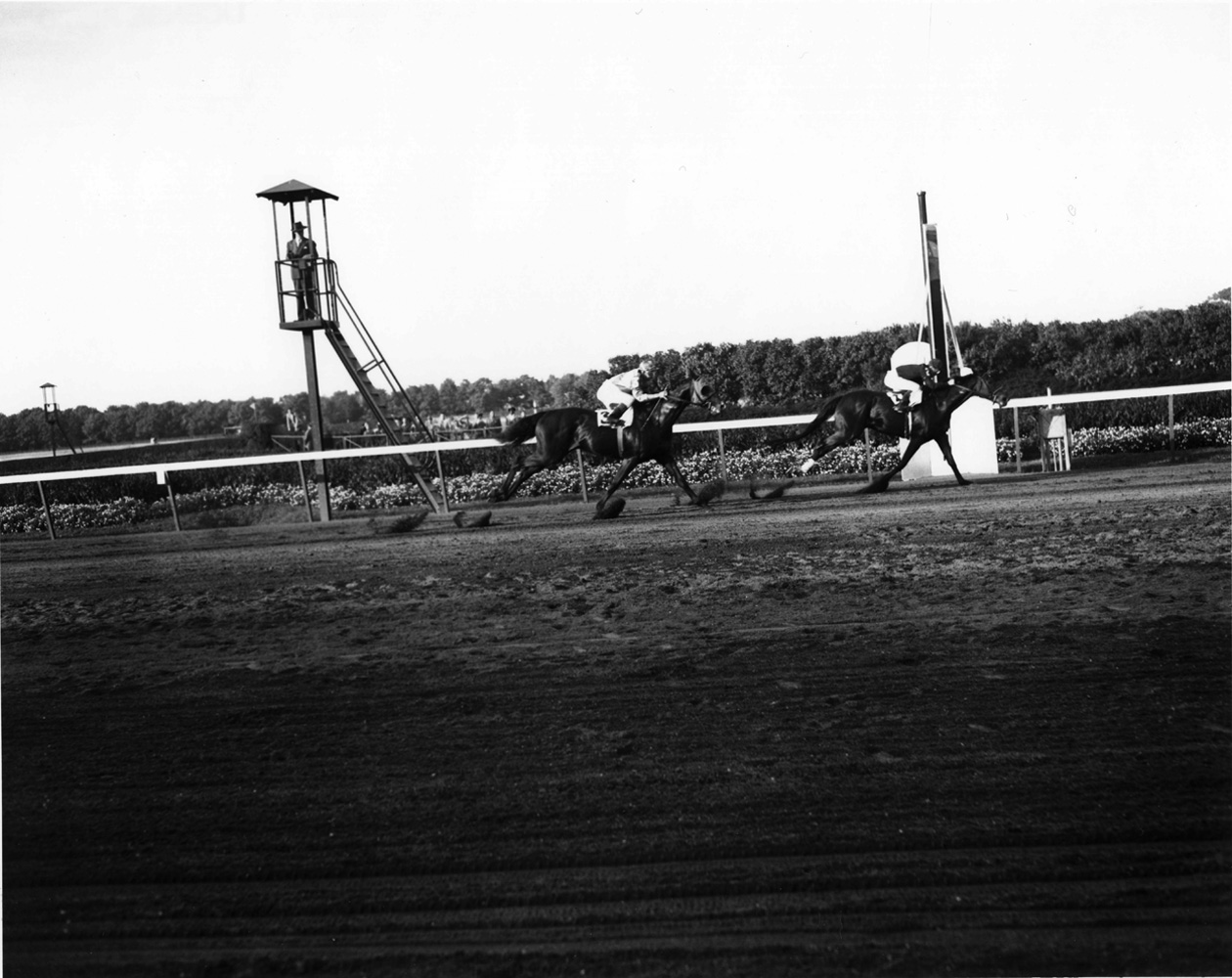 Armed (Al Snider up) winning the 1947 Sysonby Mile at Belmont Park (Keeneland Library Morgan Collection/Museum Collection)