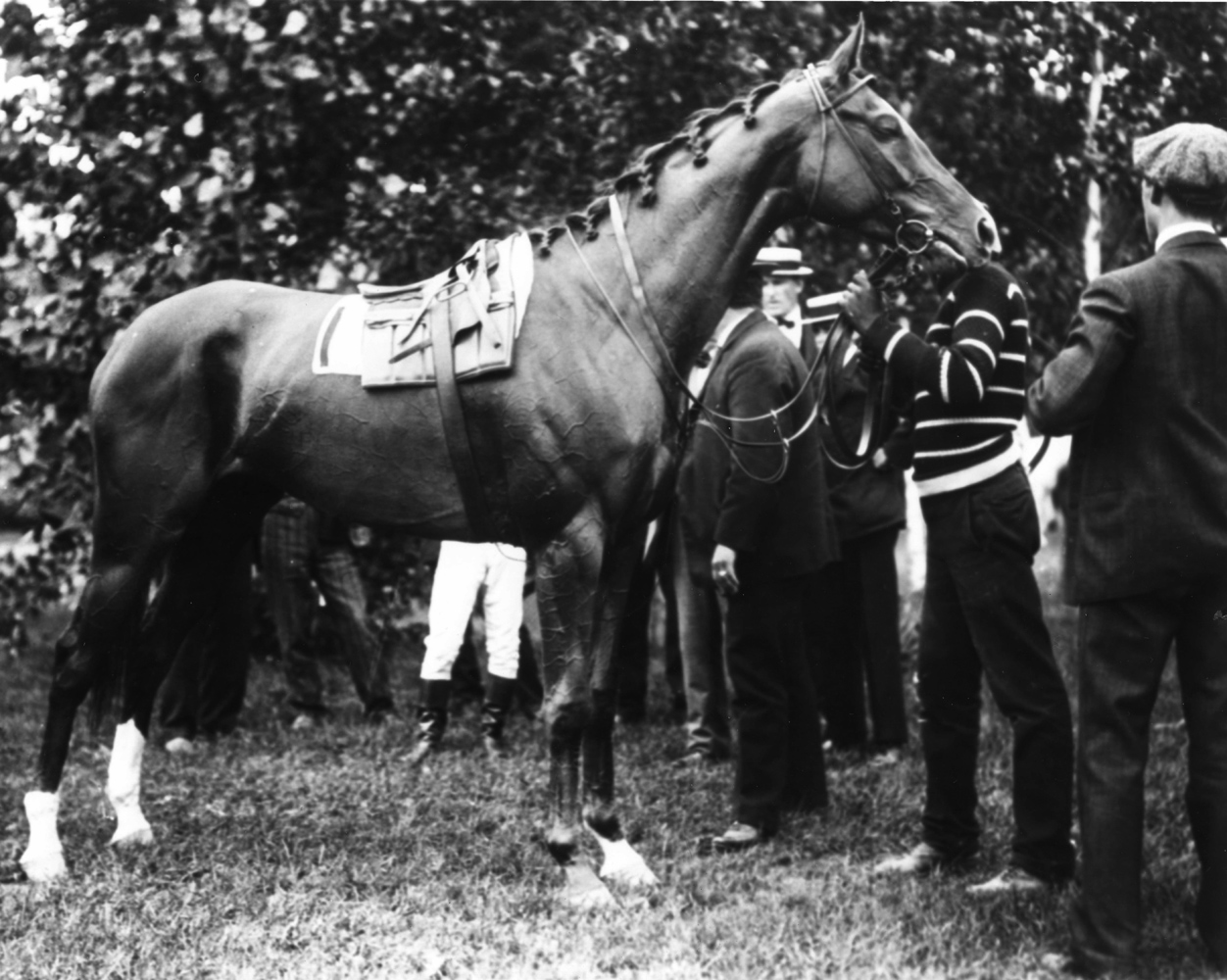 Beldame at Sheepshead Bay, 1905 (Keeneland Library Cook Collection/Museum Collection)