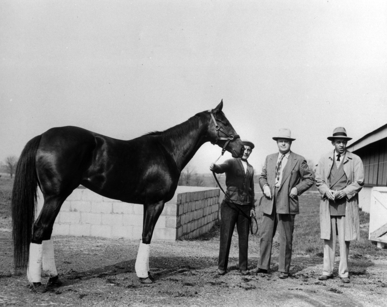 Bewitch with Harry Smith, trainer Ben Jones and Paul Ebelhardt, April 1948 (The BloodHorse/Museum Collection)