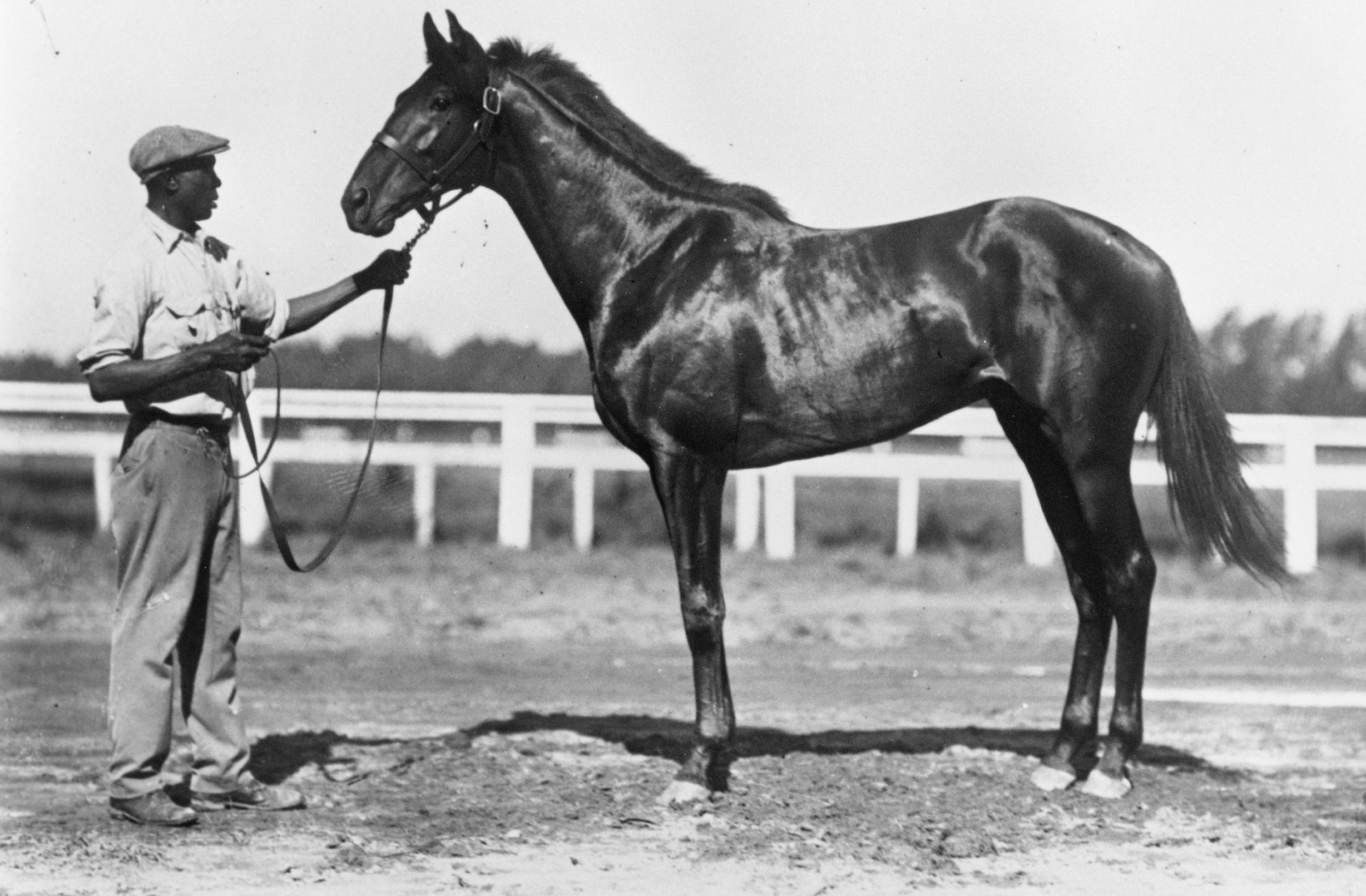 Blue Larkspur with unidentified handler (Keeneland Library Cook Collection/Museum Collection)