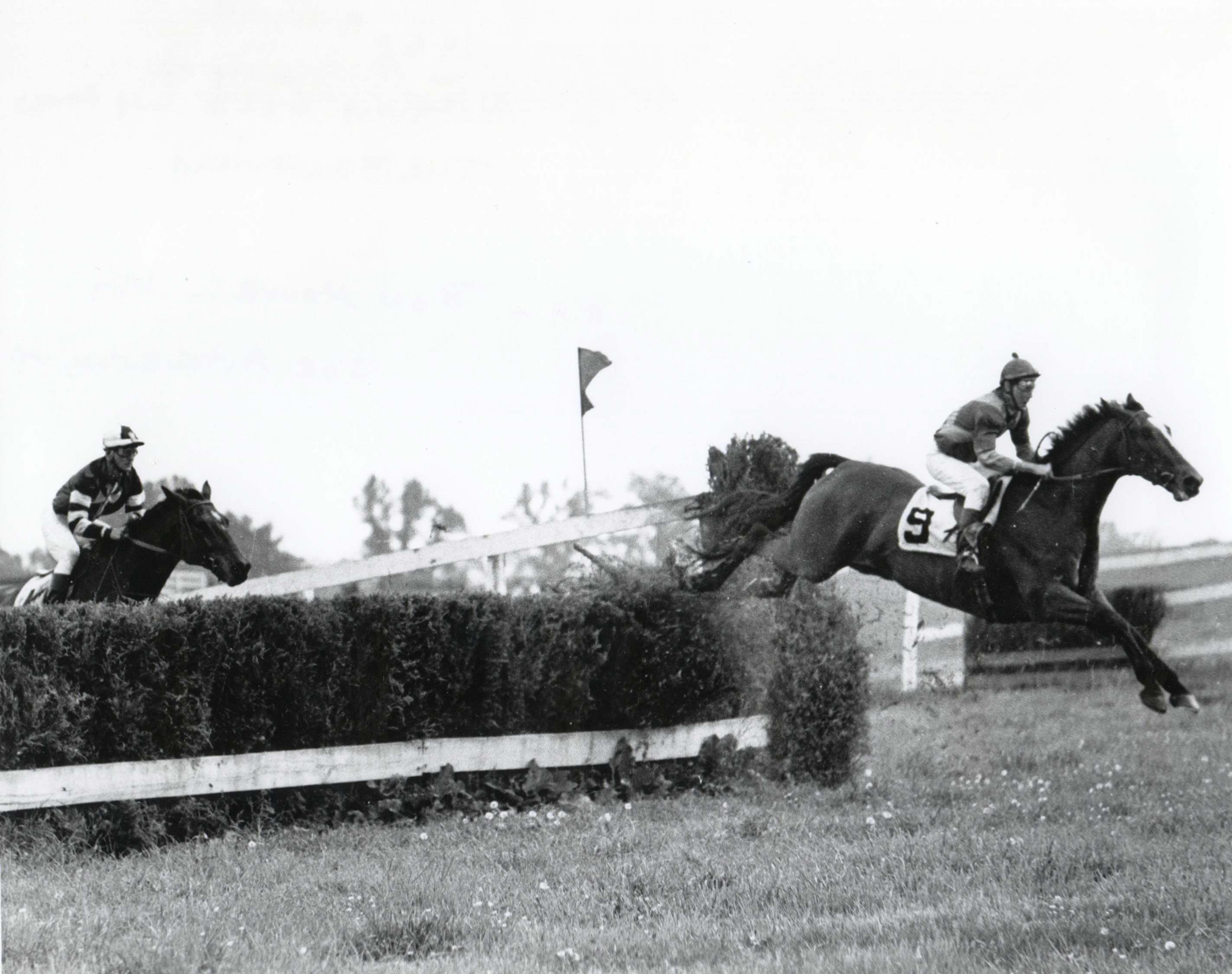 Bon Nouvel (Joe Aitcheson up) going over a jump at the Broadview on May 4, 1968 in Warrenton, Virginia (Douglas Lees/Museum Collection)