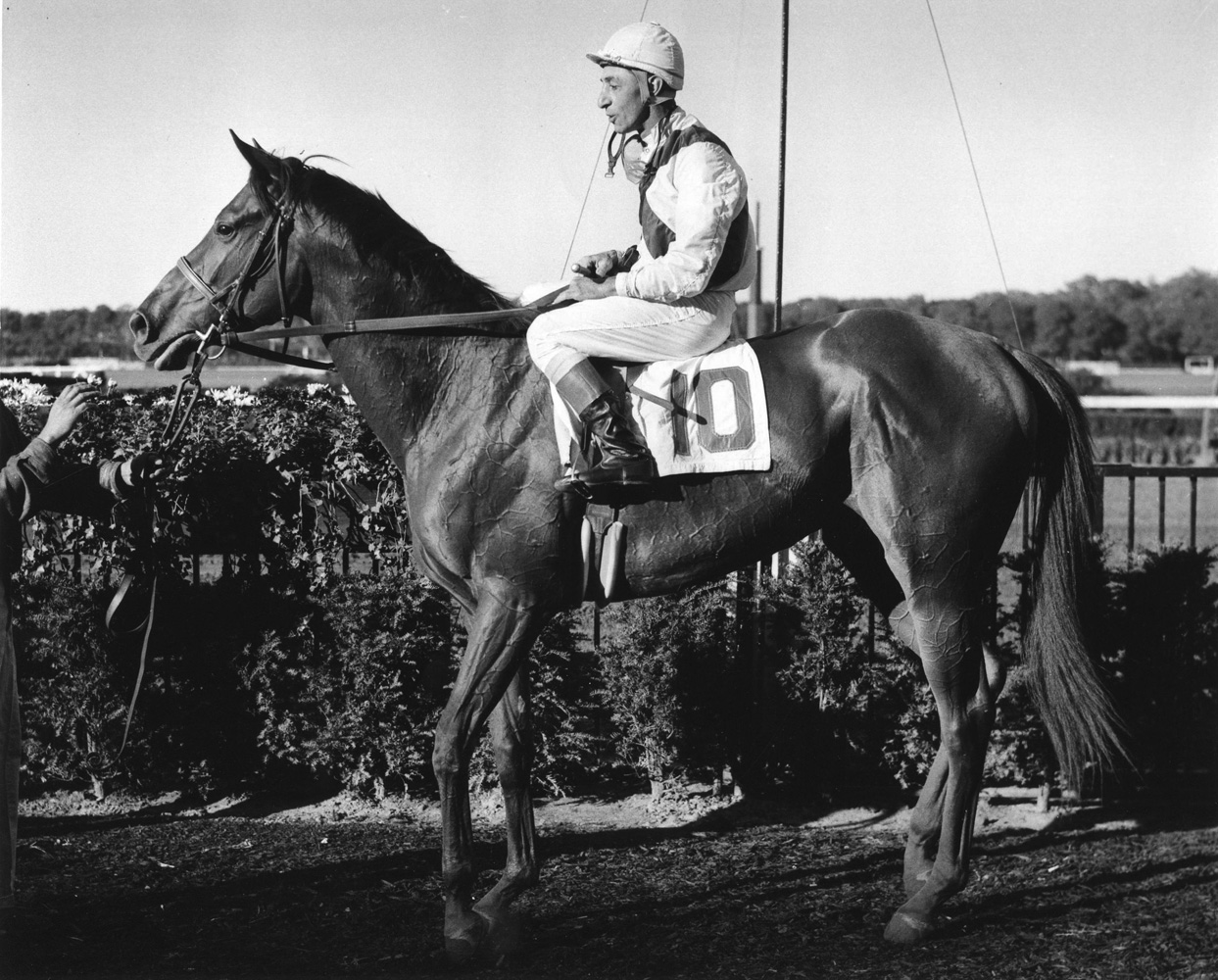 Bowl of Flowers (Eddie Arcaro up)  at Belmont Park, October 1960 (Bert and Richard Morgan/Museum Collection)
