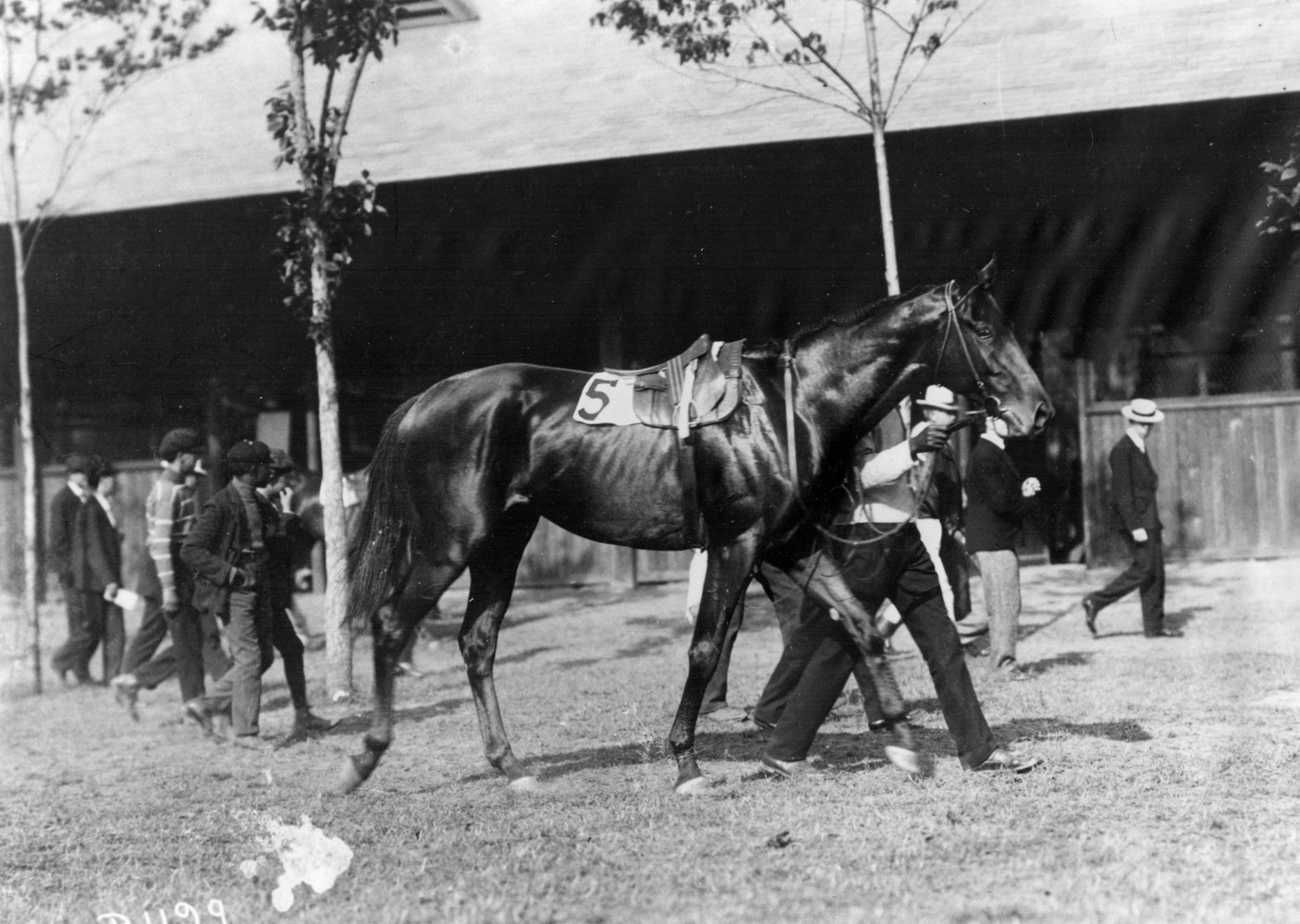 Broomstick (Keeneland Library Cook Collection/Museum Collection)