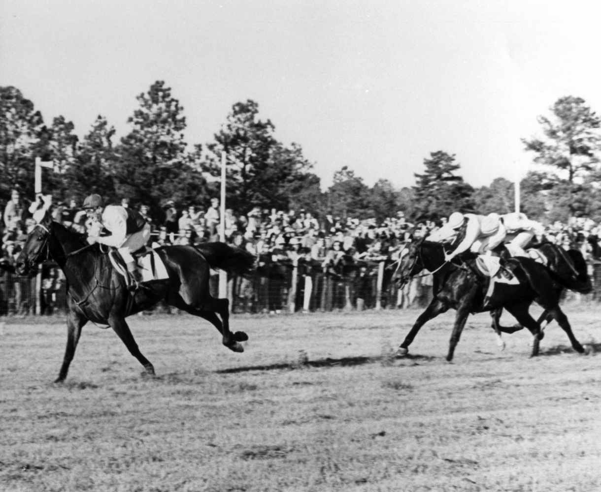 Café Prince (Dave Washer up) racing to victory in the 1975 Colonial Cup at Camden (The BloodHorse/Museum Collection)