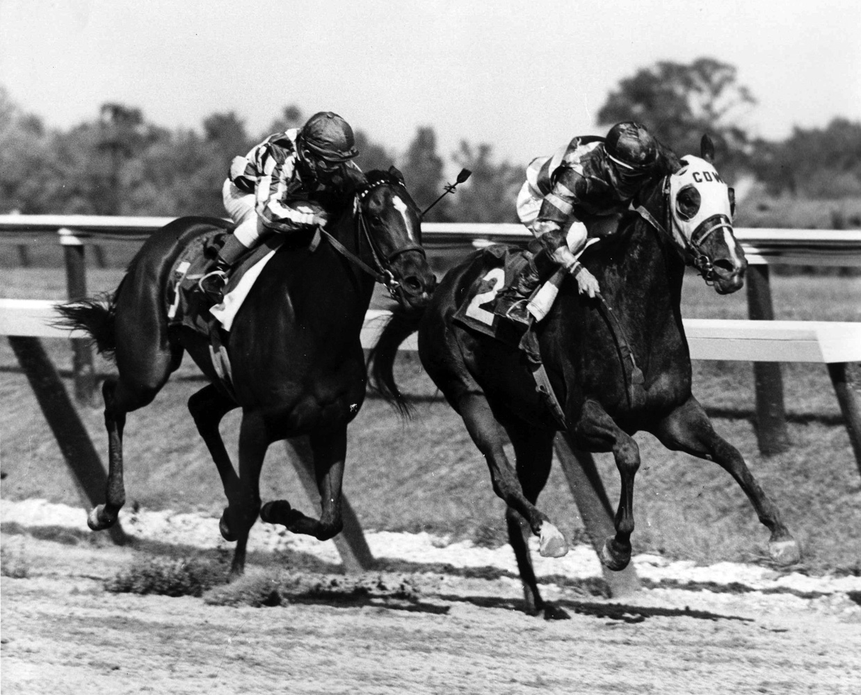 Cicada (on left with Bill Shoemaker up) racing in the 1962 Delaware Handicap (Delaware Park Photo/Museum Collection)