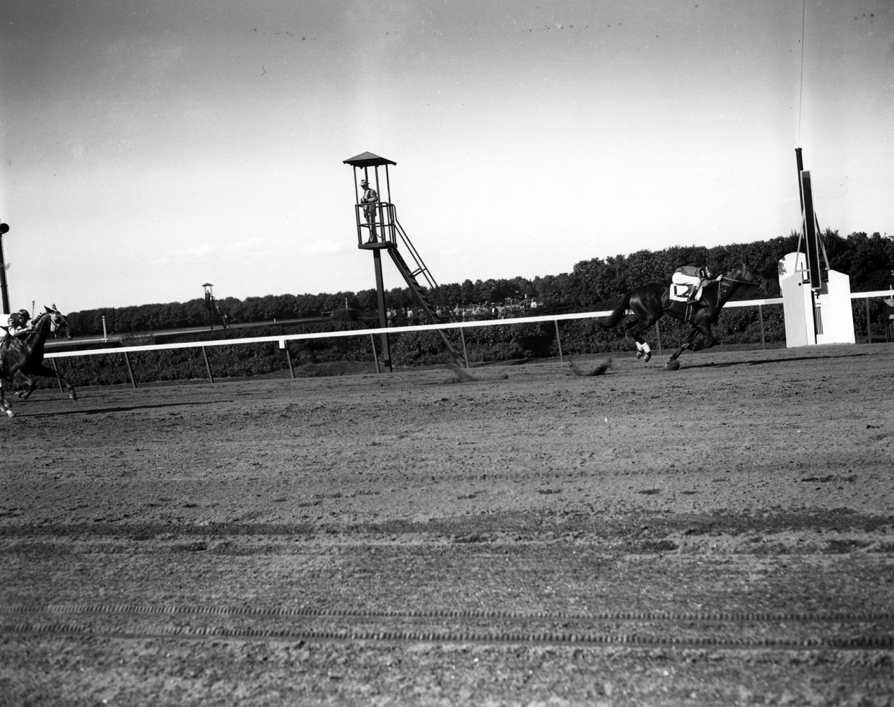 Coaltown (Niebold Pierson up) winning the 1948 Jerome Handicap at Belmont Park (Keeneland Library Morgan Collection/Museum Collection)