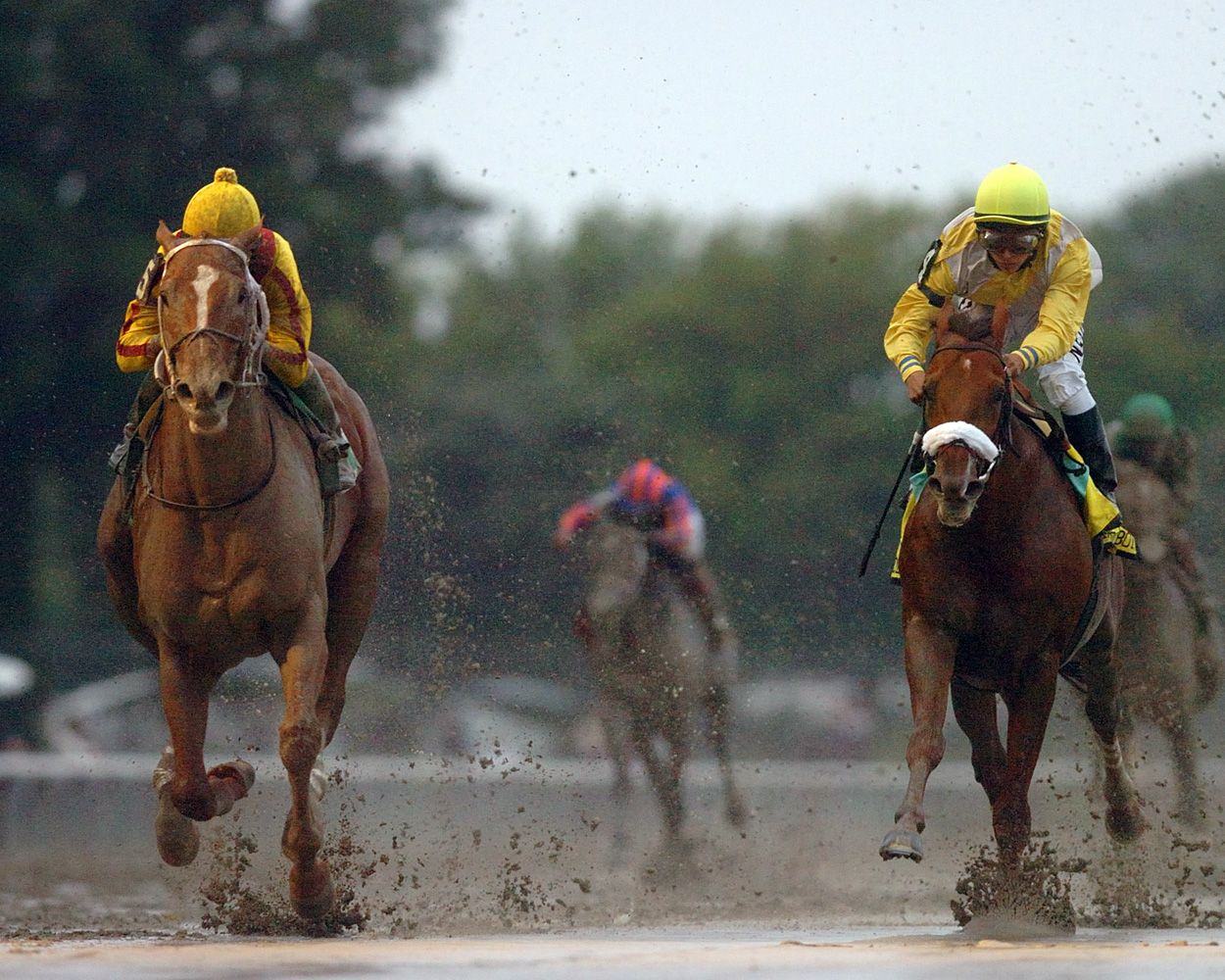Curlin (Robby Albarado up) racing down the stretch in the 2008 Jockey Club Gold Cup at Belmont Park (NYRA)
