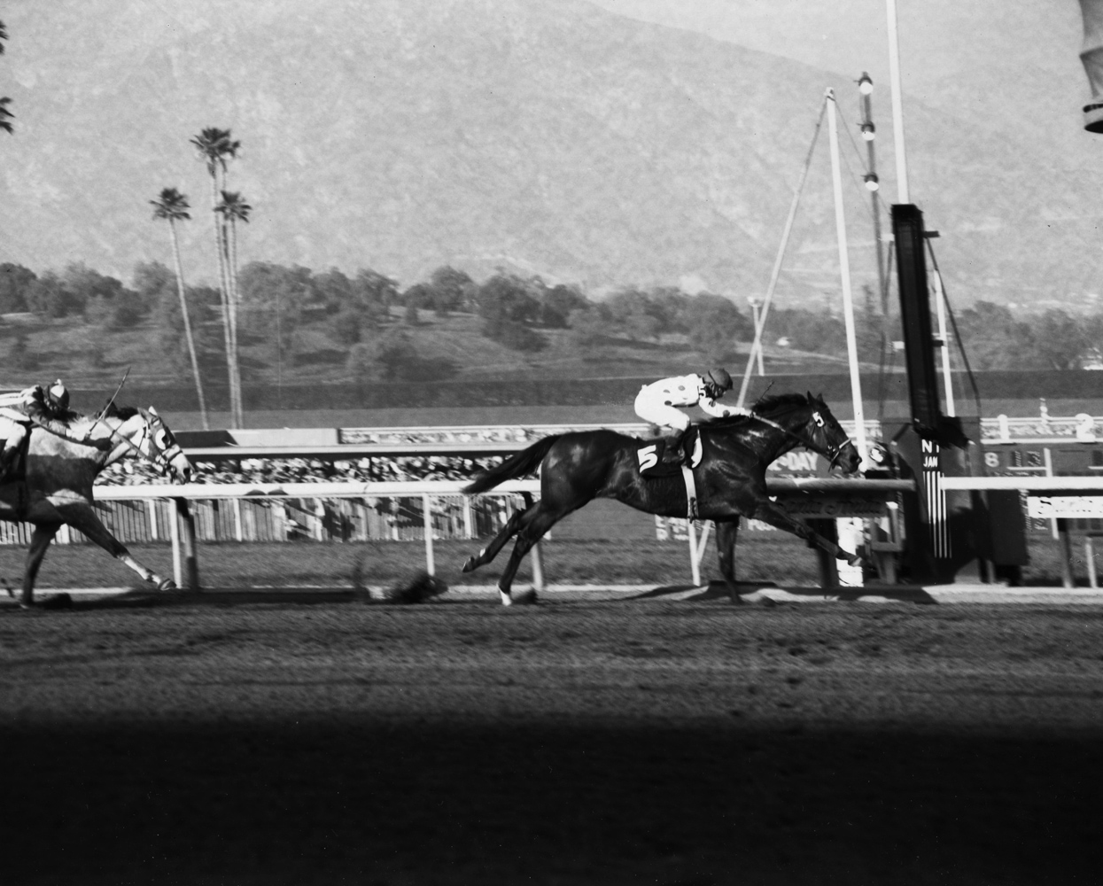 Damascus (Bill Shoemaker up) winning the 1968 San Fernando at Santa Anita Park (Santa Anita Photo/Museum Collection)
