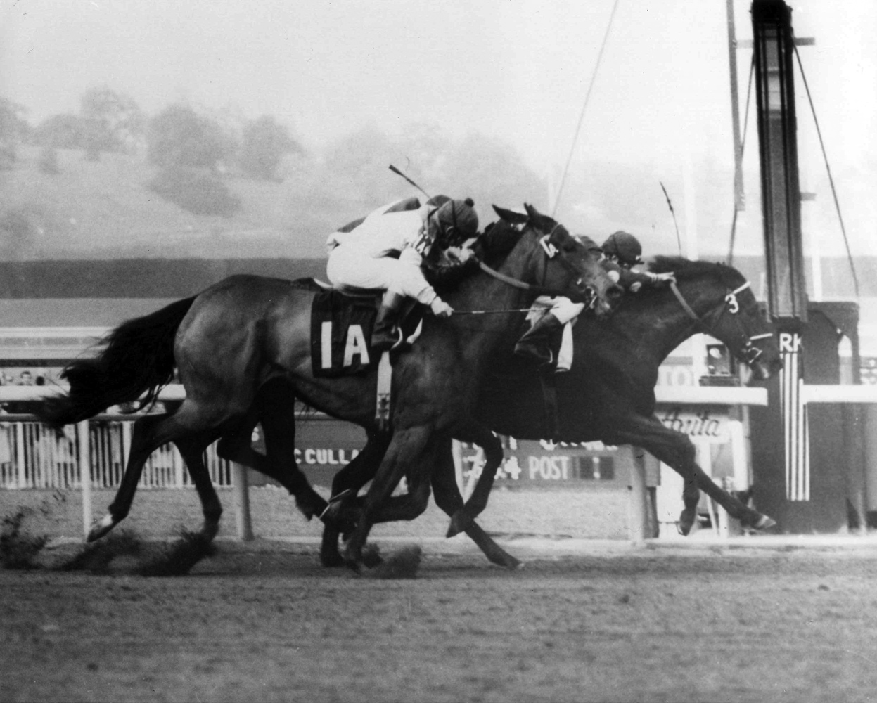Dark Mirage (Eddie Belmonte up) wins the 1969 Santa Maria Handicap at Santa Anita Park by a nose (Santa Anita Photo/Museum Collection)