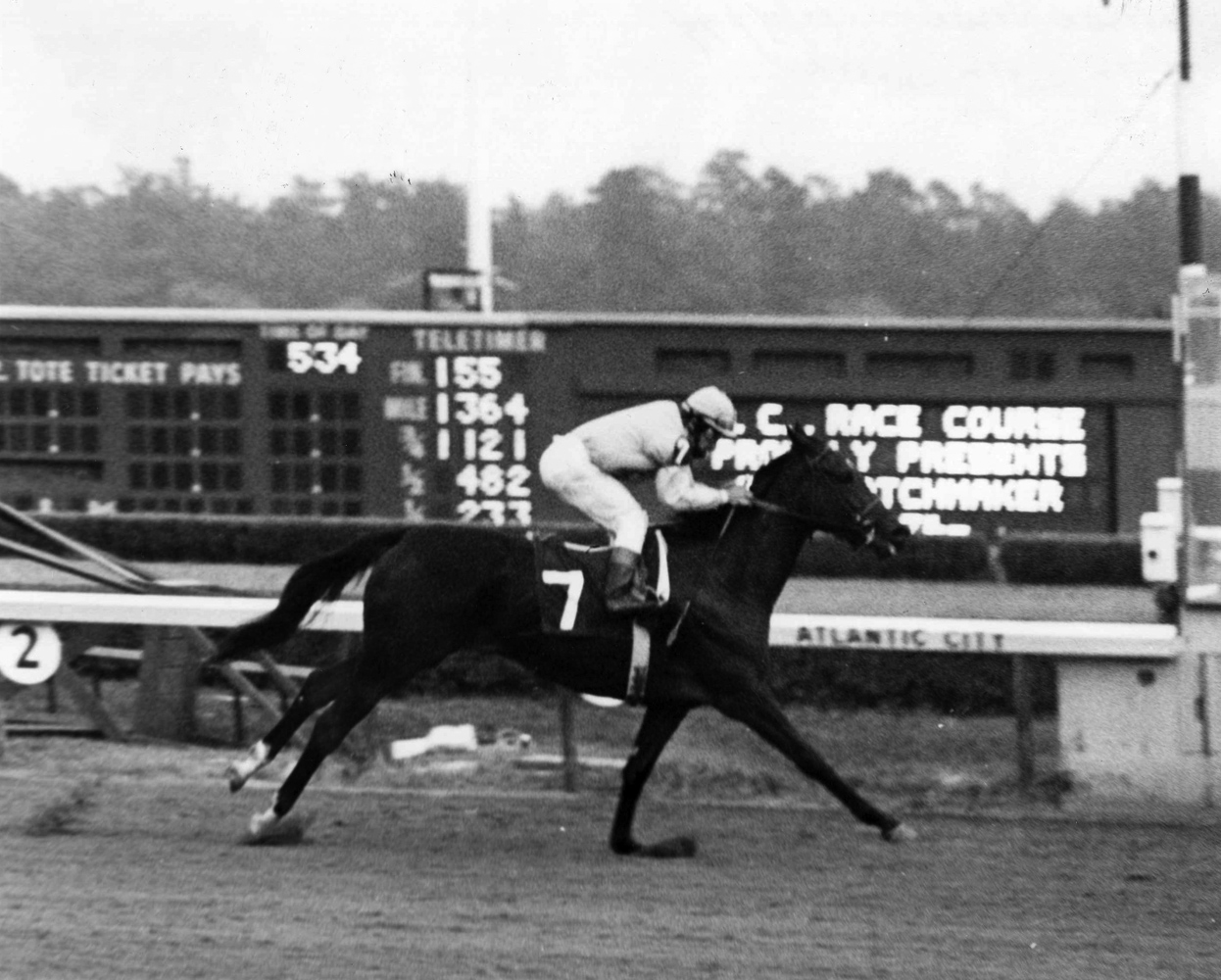 Desert Vixen (Laffit Pincay up) winning the 1974 Matchmaker Stakes at Atlantic City Race Course (Jim Raftery Turfotos/Museum Collection)