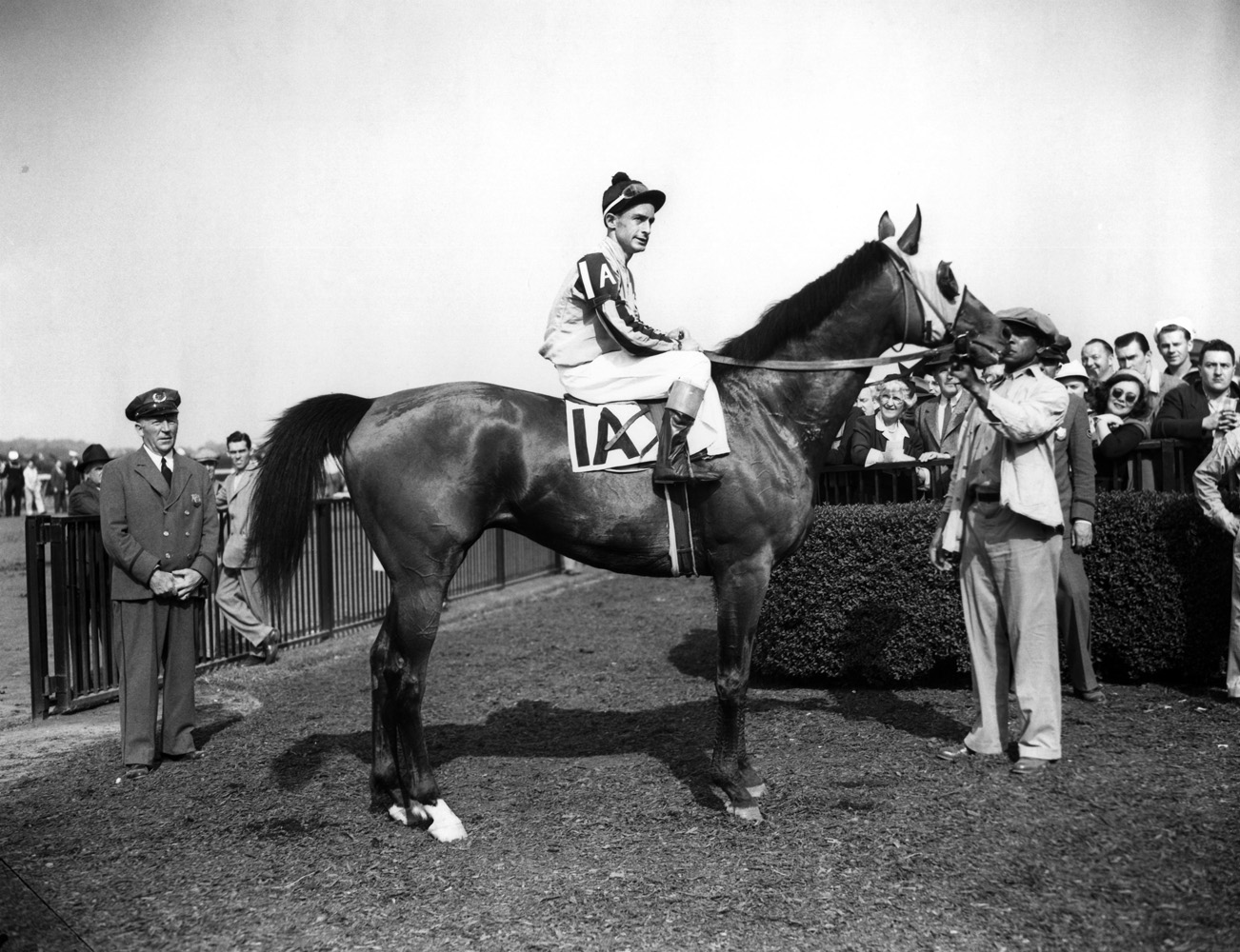 Devil Diver (Ted Atkinson up) in the winner's circle for the 1944 Metropolitan Handicap at Belmont Park (Keeneland Library Morgan Collection/Museum Collection)