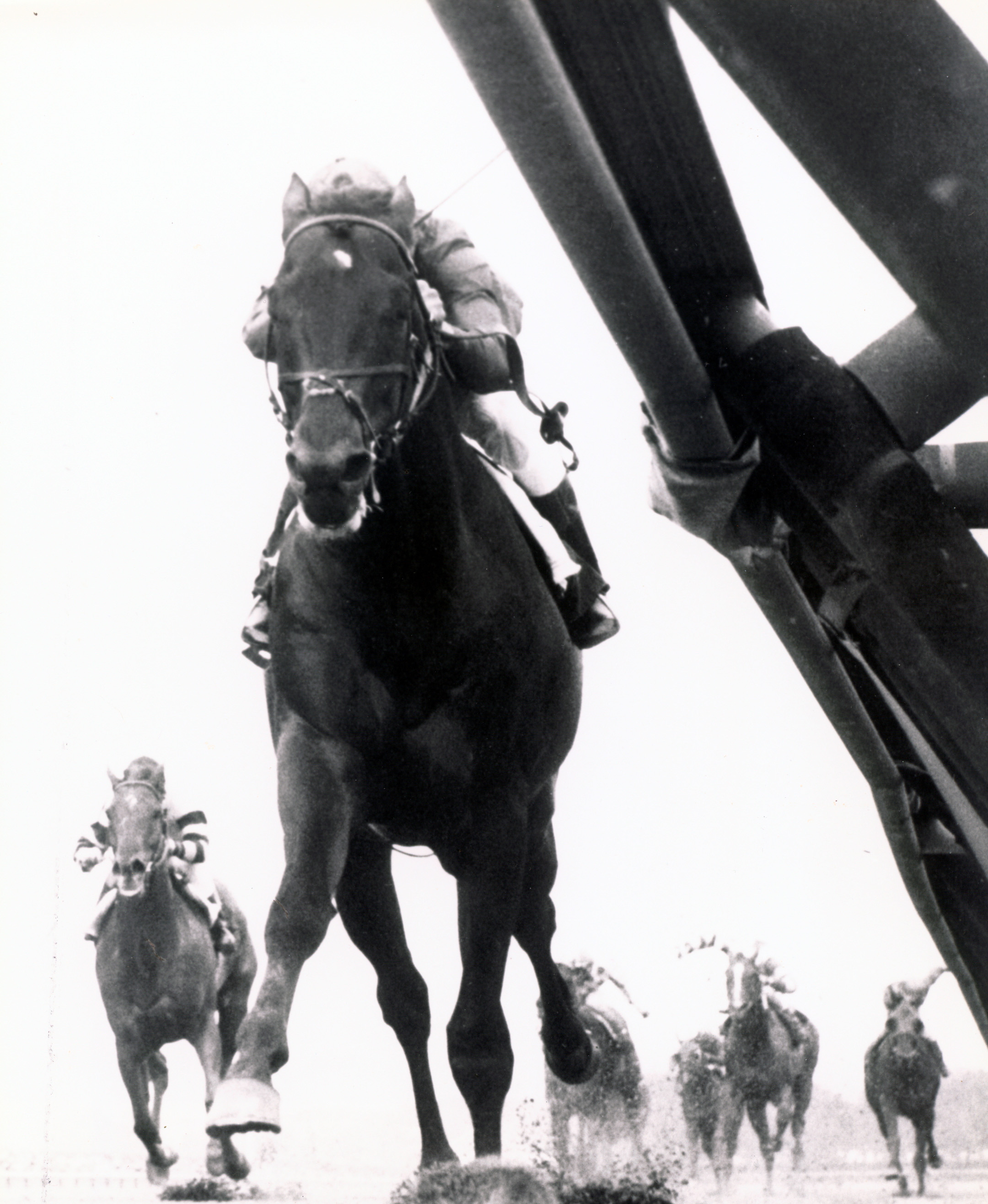 Dr. Fager (Braulio Baeza up) winning the 1968 Vosburgh Handicap at Aqueduct (The BloodHorse/Museum Collection)