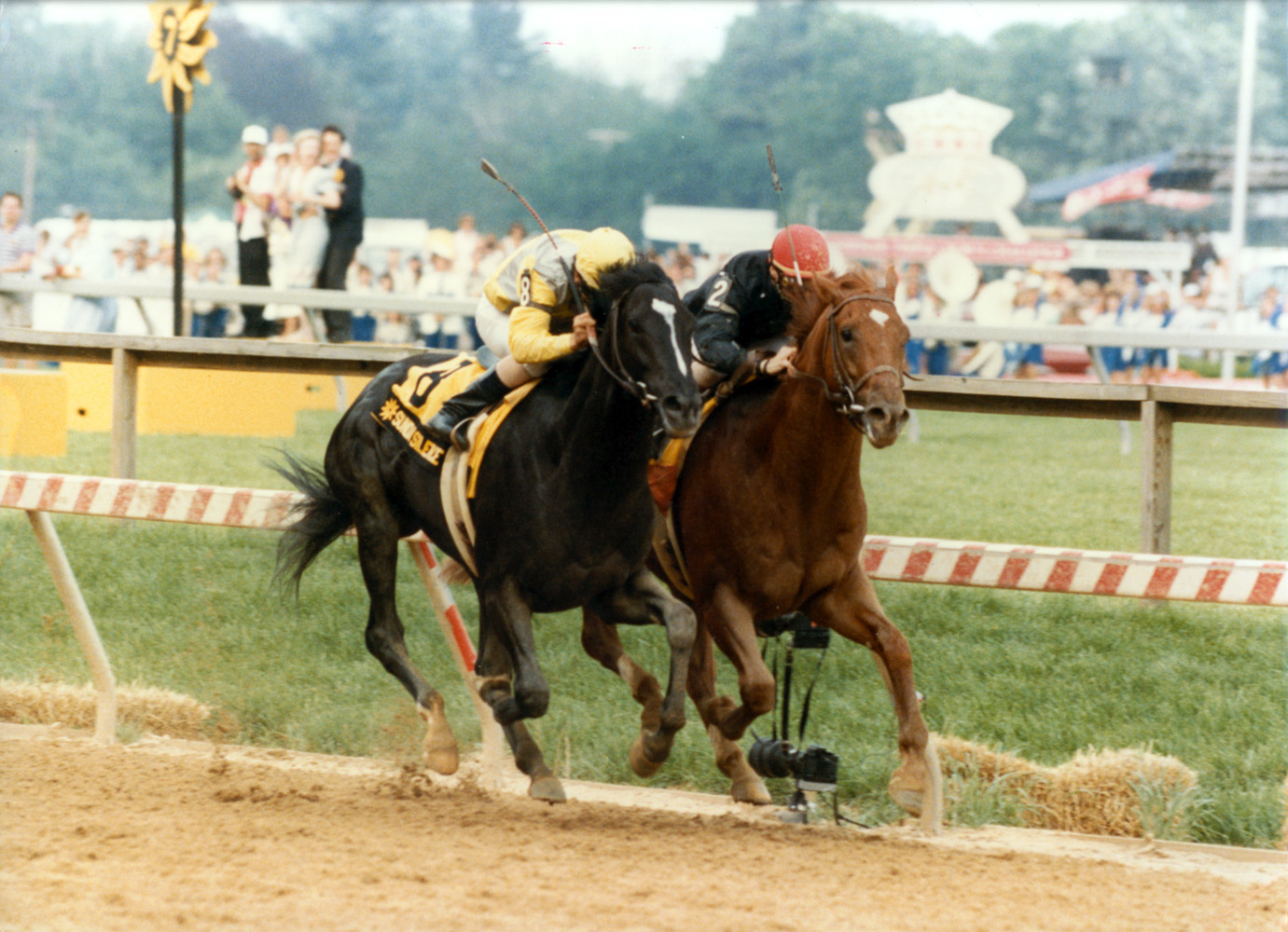 Easy Goer (Pat Day up) dueling Sunday Silence down the stretch in the 1989 Preakness Stakes at Pimlico (Skip Dickstein/Museum Collection)