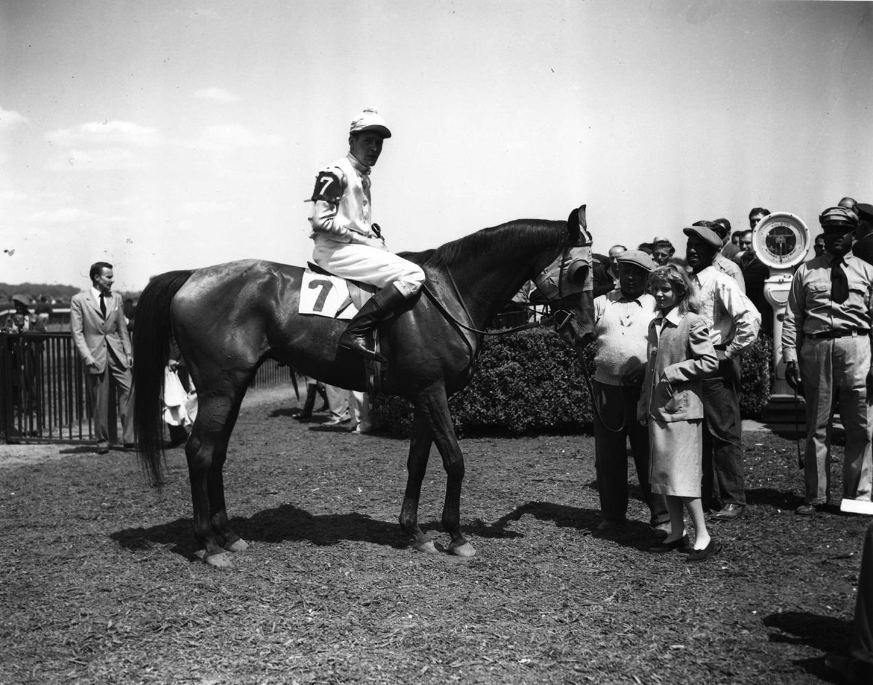 Elkridge (P. Smithwick up) in the winner's circle for the 1949 Meadow Brook Handicap Steeplechase at Belmont Park (Keeneland Library Morgan Collection/Museum Collection)