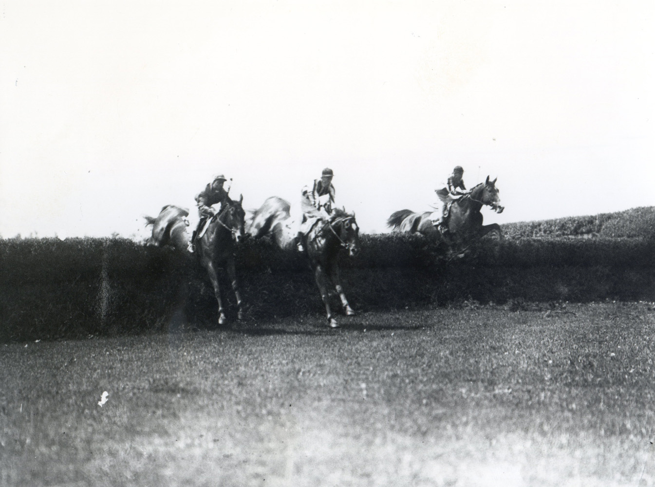 Fairmount, center, in the 1928 Charles Appleton Memorial Steeplechase at Belmont (Keeneland Library Cook Collection/Museum Collection)