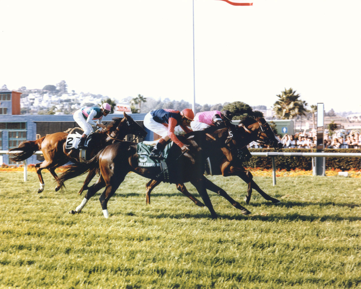 Flawlessly (Chris McCarron up) winning her third consecutive Ramona Handicap by a head in 1994 (Del Mar Thoroughbred Club/Museum Collection)