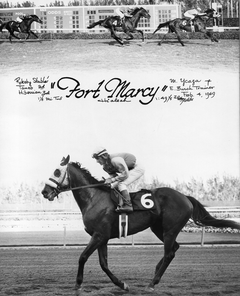 Win composite photograph for a 1969 allowance race at Hialeah Park, won by Fort Marcy (Manuel Ycaza up) (Jim Raftery Turfotos/Museum Collection)