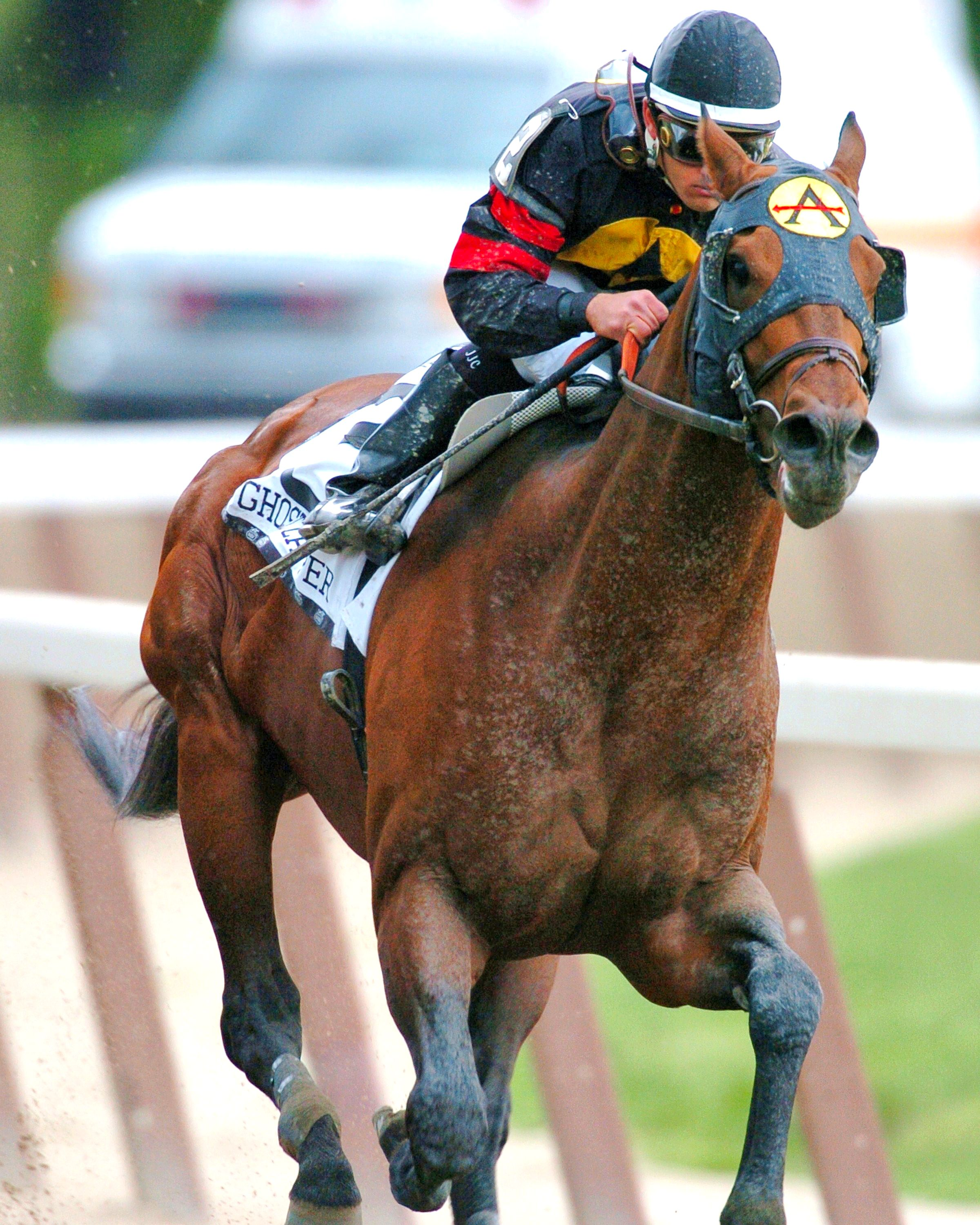 Ghostzapper (Javier Castellano up) charging to the finish line (NYRA)