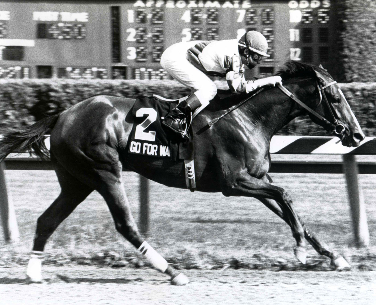 Go for Wand (Randy Romero up) winning the 1990 Test Stakes at Saratoga (NYRA/Museum Collection)