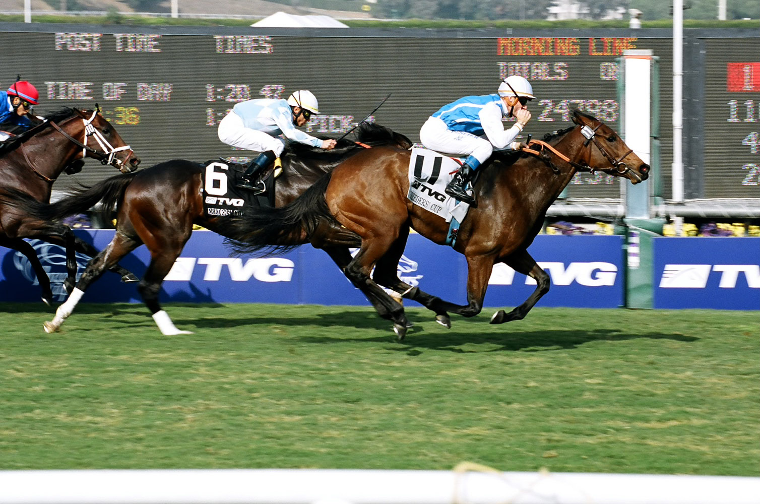 Goldikova (Olivier Peslier up) winning her second Breeders' Cup Mile at Oak Tree at Santa Anita in November 2009 (Bill Mochon/Museum Collection)