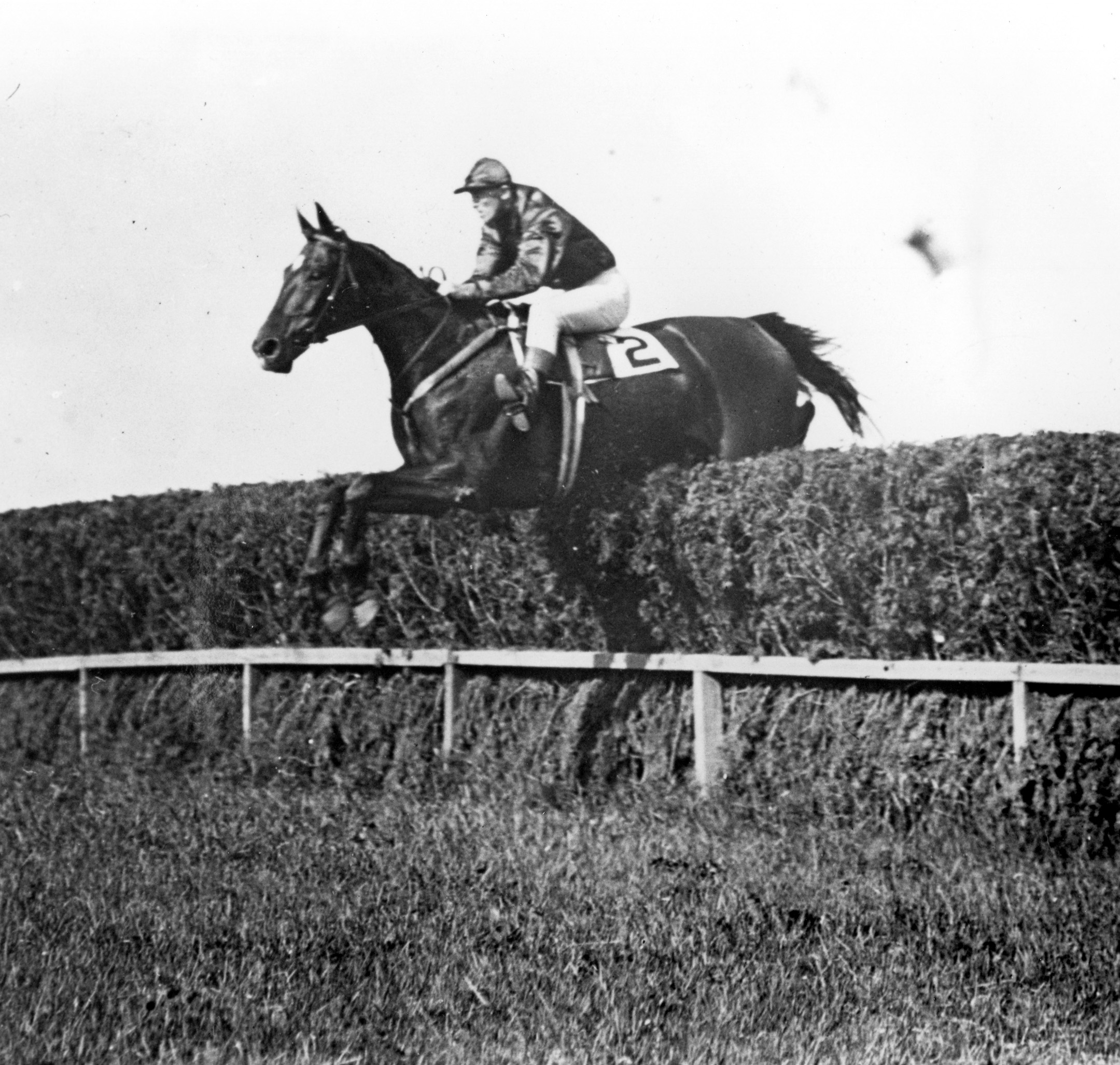 Good And Plenty clearing a jump at Belmont Park, 1905 (Keeneland Library Cook Collection/Museum Collection)