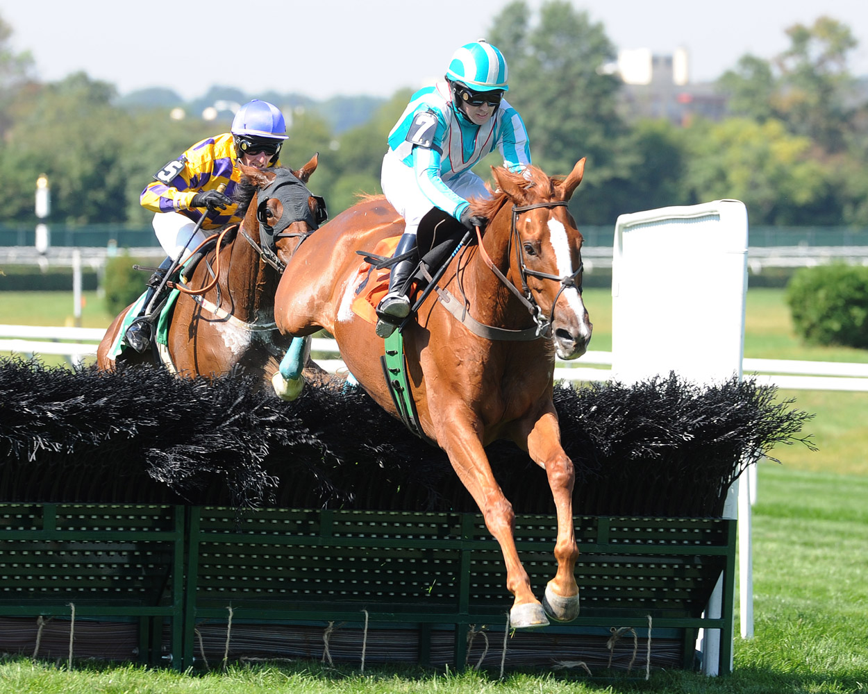 Good Night Shirt (Dowling up) clearing a jump in the 2007 Lonesome Glory Steeplechase at Belmont Park (NYRA)