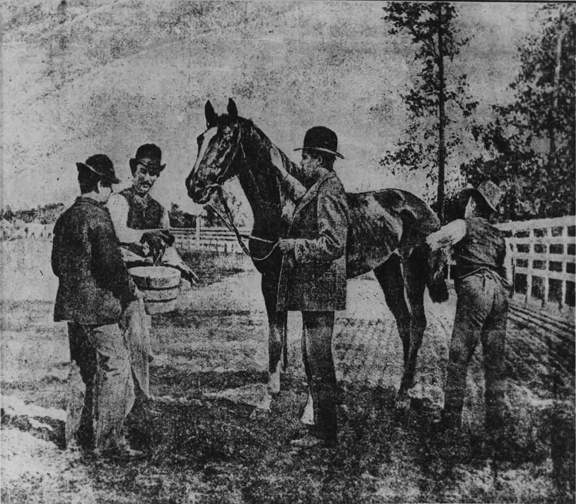 Illustration of Hanover at Morris Park in September 1889 (Museum Collection)