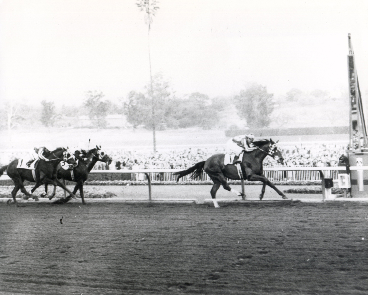Hill Prince (Eddie Arcaro up) winning the 1952 San Marcos Handicap at Santa Anita (The BloodHorse/Museum Collection)