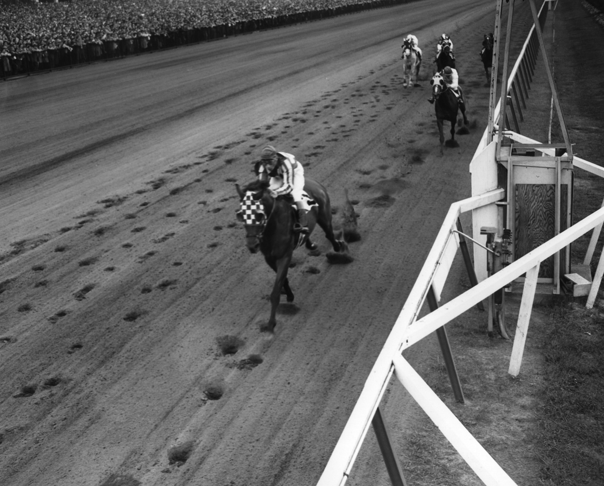 Hill Prince (Eddie Arcaro up) winning the 1950 Jockey Club Gold Cup at Belmont (Keeneland Library Morgan Collection/Museum Collection)