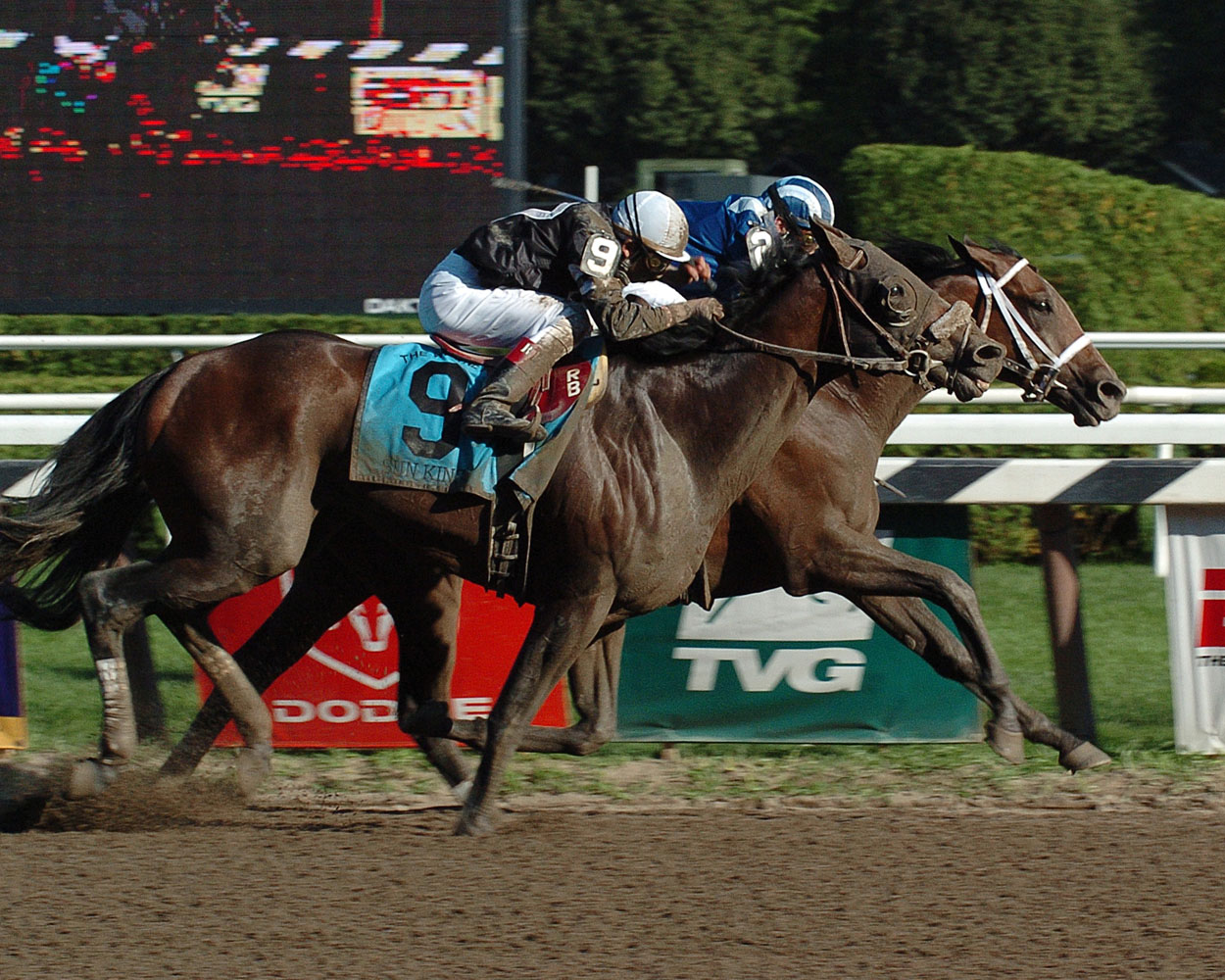Invasor (Fernando Jara up) at the finish, winning the 2006 Whitney by a nose (NYRA)