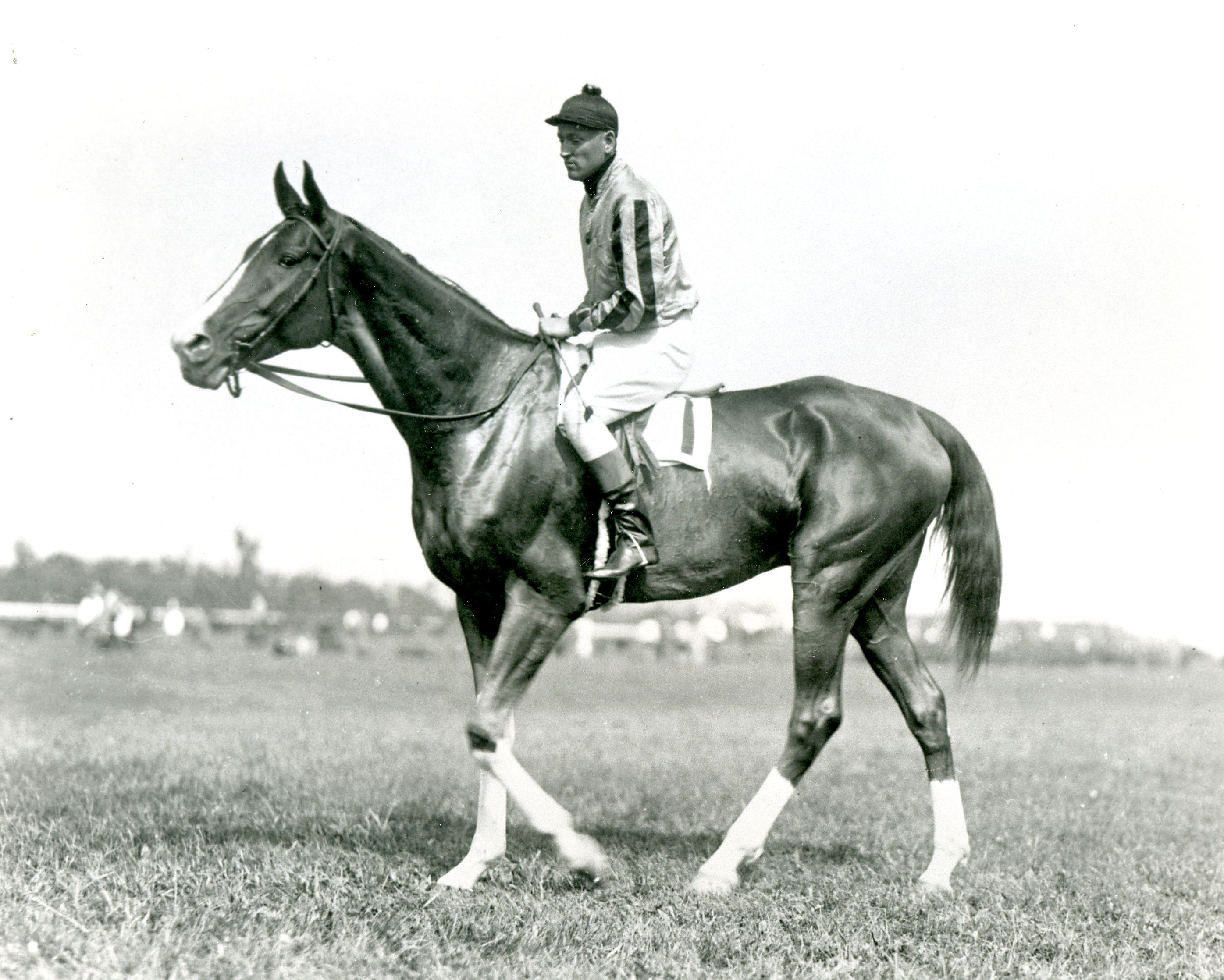 Jolly Roger with Robert Crawford up (Keeneland Library Cook Collection/Museum Collection)