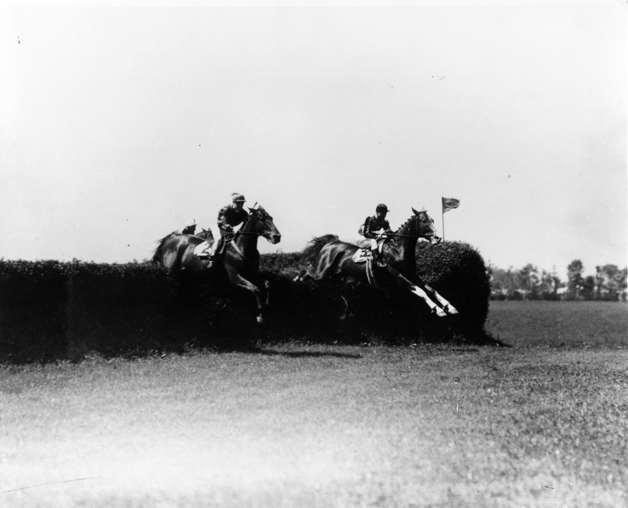 Jolly Roger soaring over a jump in the 1928 Corinthian Steeplechase at Belmont Park (Keeneland Library Cook Collection/Museum Collection)