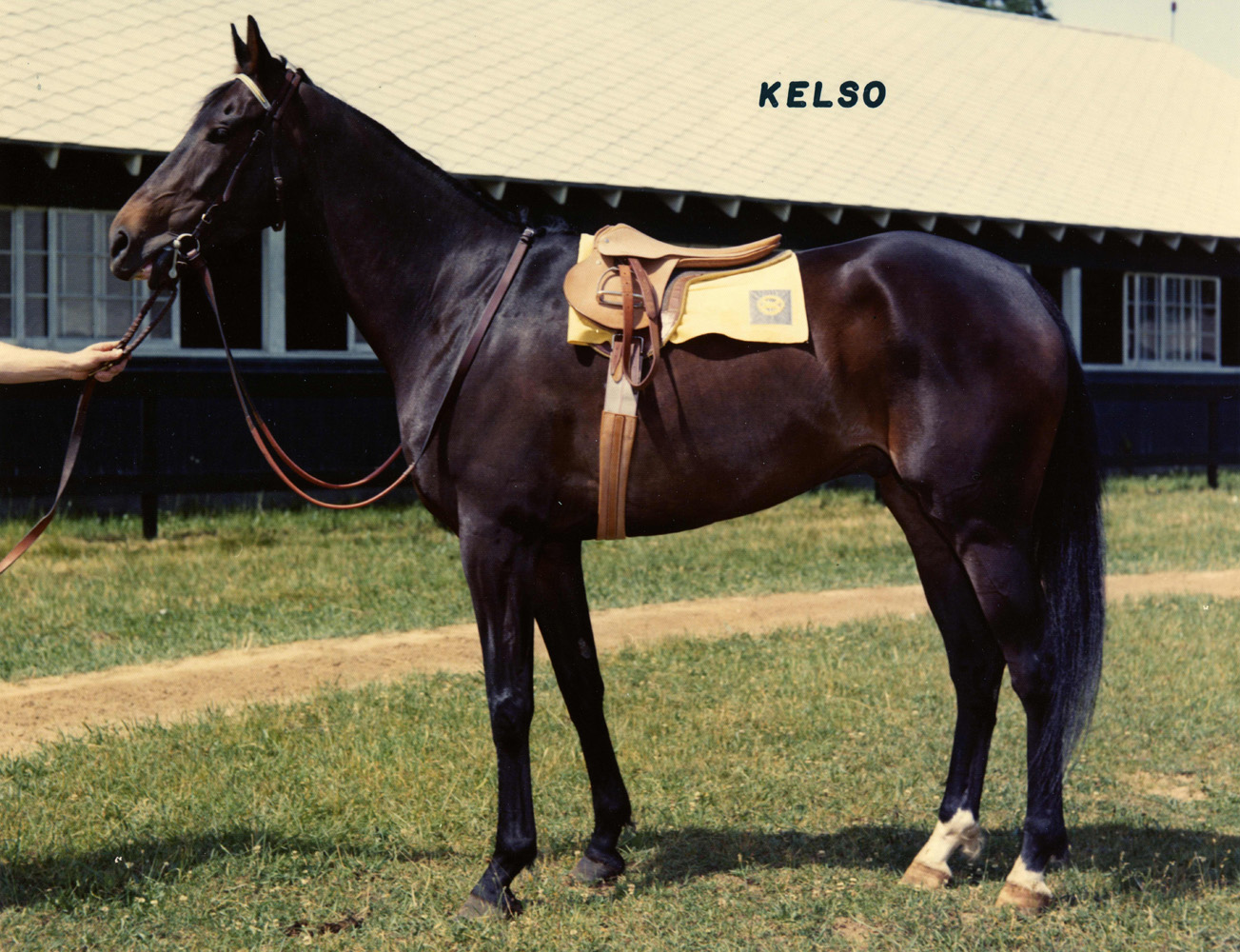 Undated conformation shot of Kelso (Museum Collection)