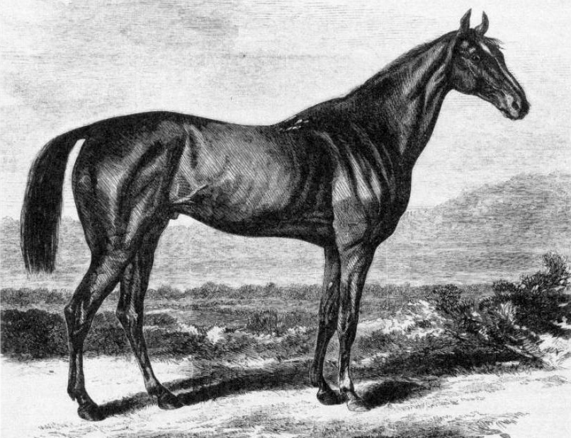 """Illustration of Kentucky from """"Harper's Weekly"""" based on a print by M. Knoedler (Museum Collection)"""