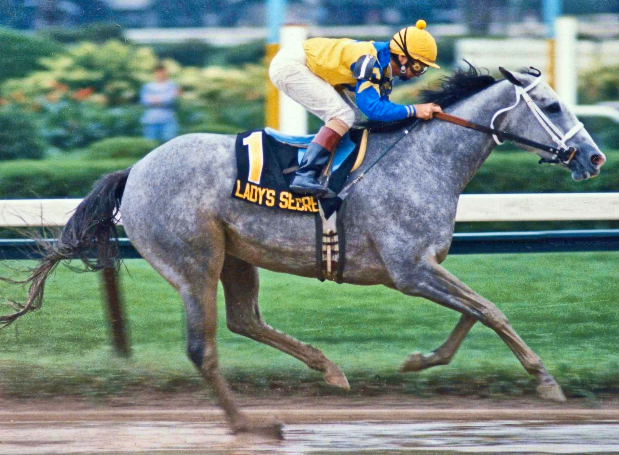 Lady's Secret (Pat Day up) racing to victory in the 1986 Whitney (Barbara D. Livingston/Museum Collection)