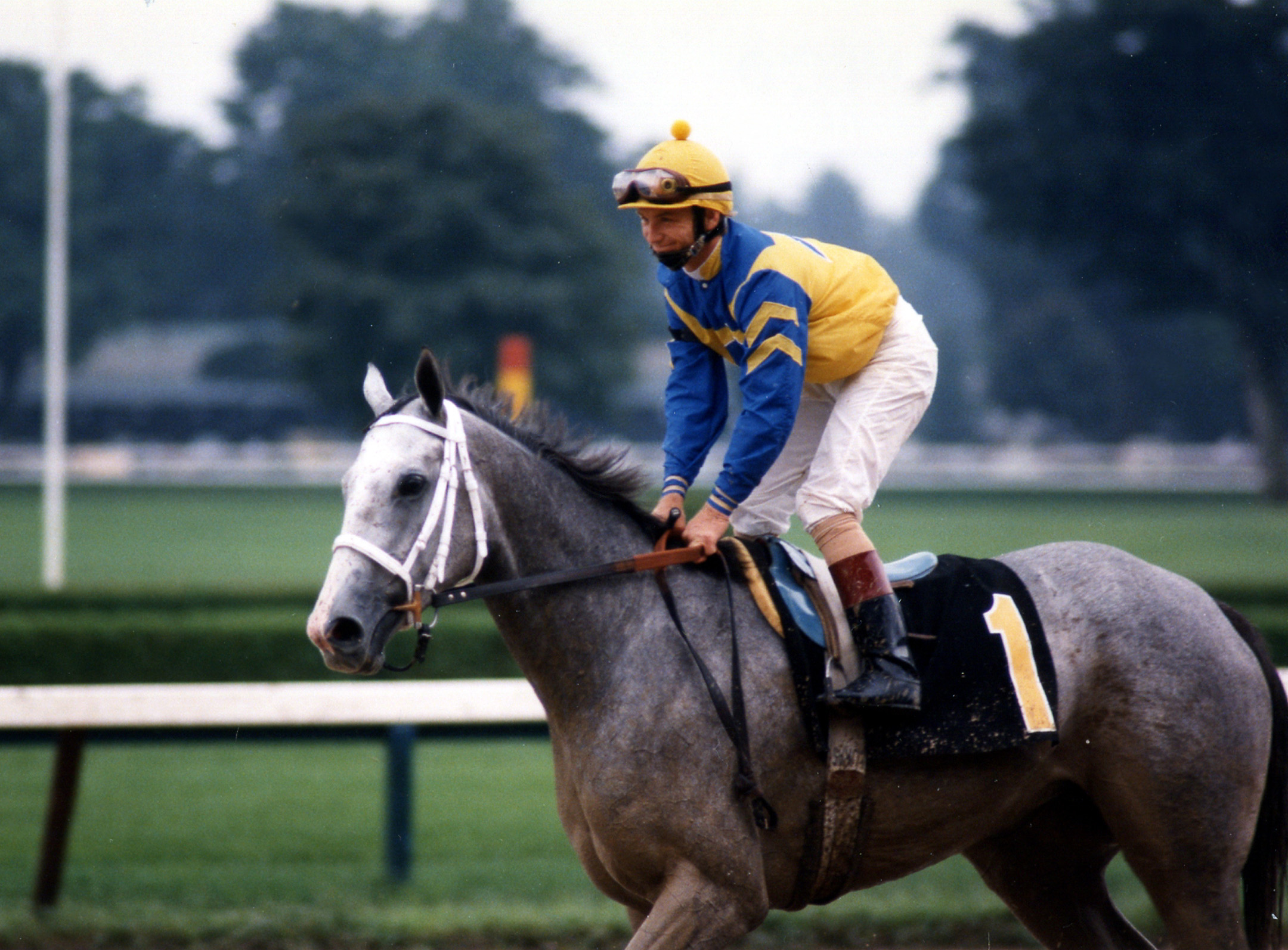 Lady's Secret (Pat Day up) on the track for the 1986 Whitney at Saratoga (Barbara D. Livingston/Museum Collection)