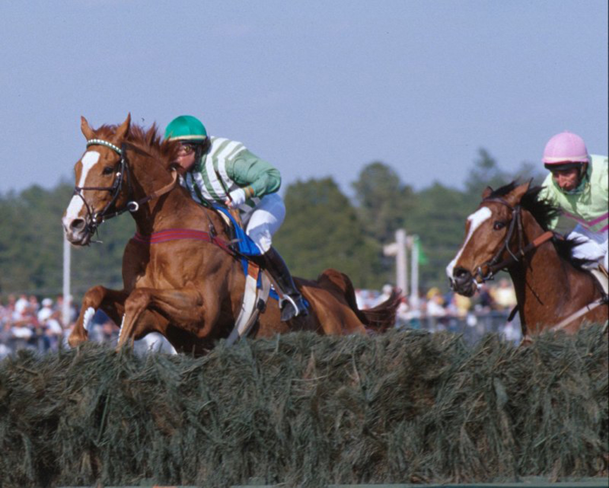 Lonesome Glory, Blythe Miller up, clearing the last jump before winning the 1999 Carolina Cup (Courtesy of Bruce Miller)