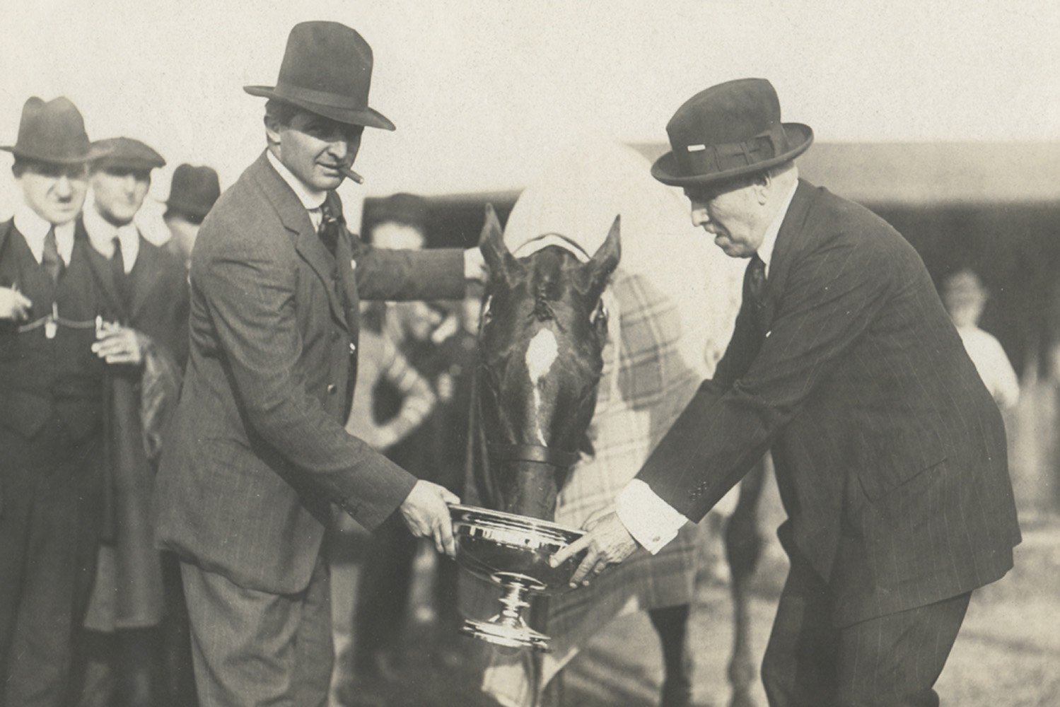 Man o' War celebrates winning his final career race with trainer Louis Feustel and owner Samuel Riddle by drinking from the Kenilworth Gold Cup trophy after defeating Sir Barton (Museum Collection)