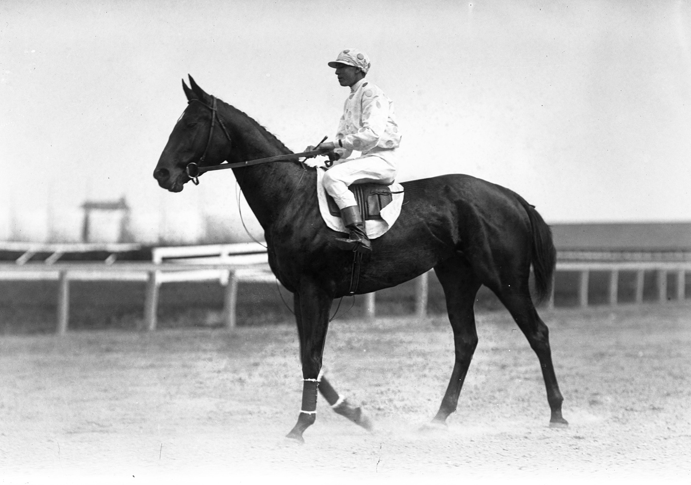 Maskette with Scoville up, 1909 (Keeneland Library Cook Collection)