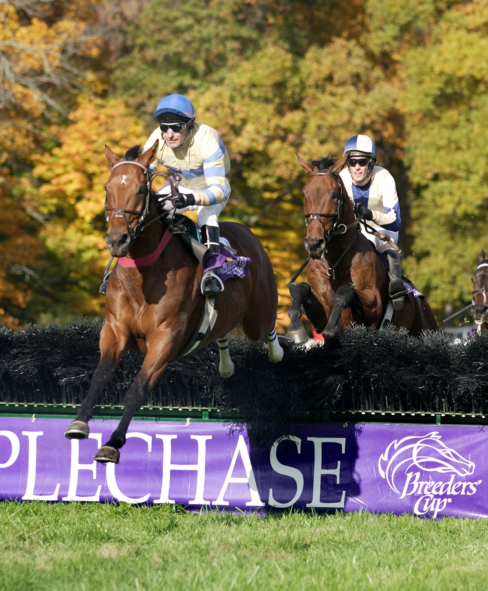 McDynamo leads Sur La Tete at the 2004 Grand National (Tod Marks)
